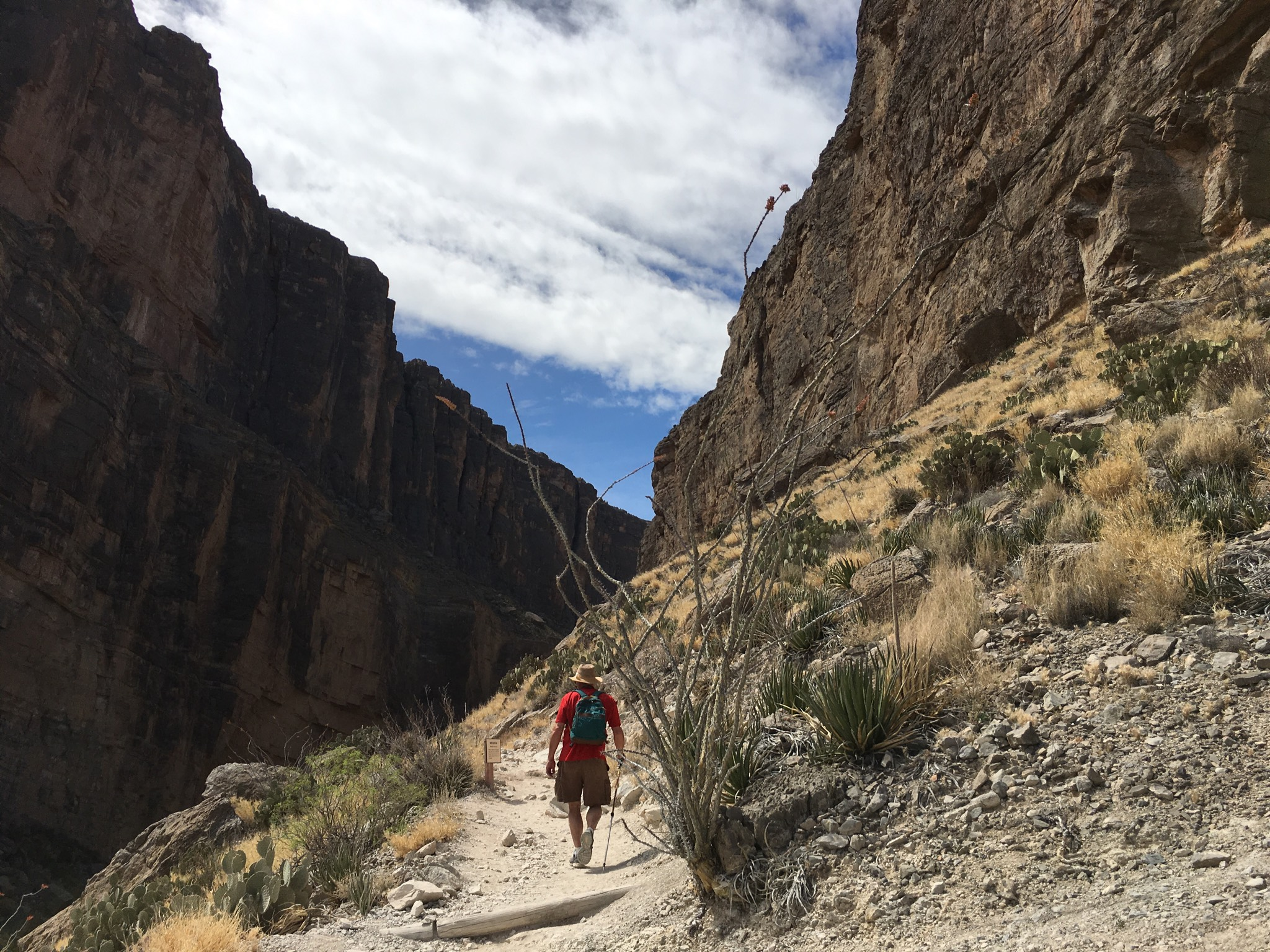 Off-road, headed up the trail to Santa Elena Canyon in Big Bend National Park. Photo by Ellen Holmes
