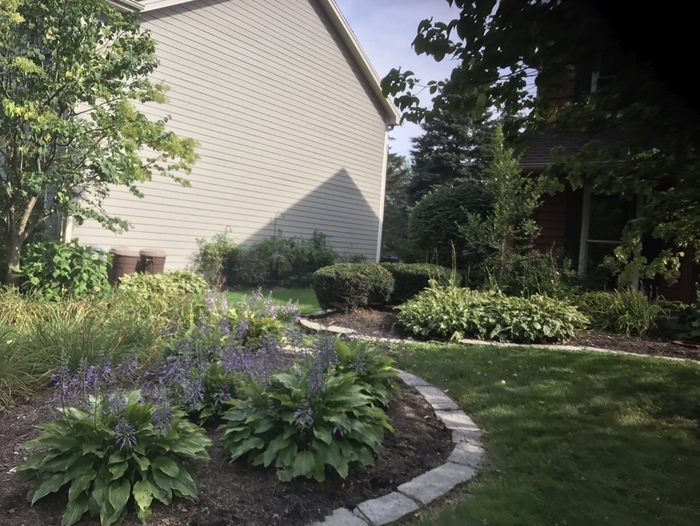Planting is a great way to substantially improve the look of your yard. Please use the instructions box below to describe the design you would like, the specific plant or bush you would like to be planted, and the number of bushes and plants that you would like to be planted.  Our highly trained and knowledgeable team members will diligently remove all your weeds in your mulch beds the proper way from removing not only the weeds but also the roots. We recommend including Preen and or weed killer. If you would like us to include Preen and or weed killer, please include that in the instruction box.