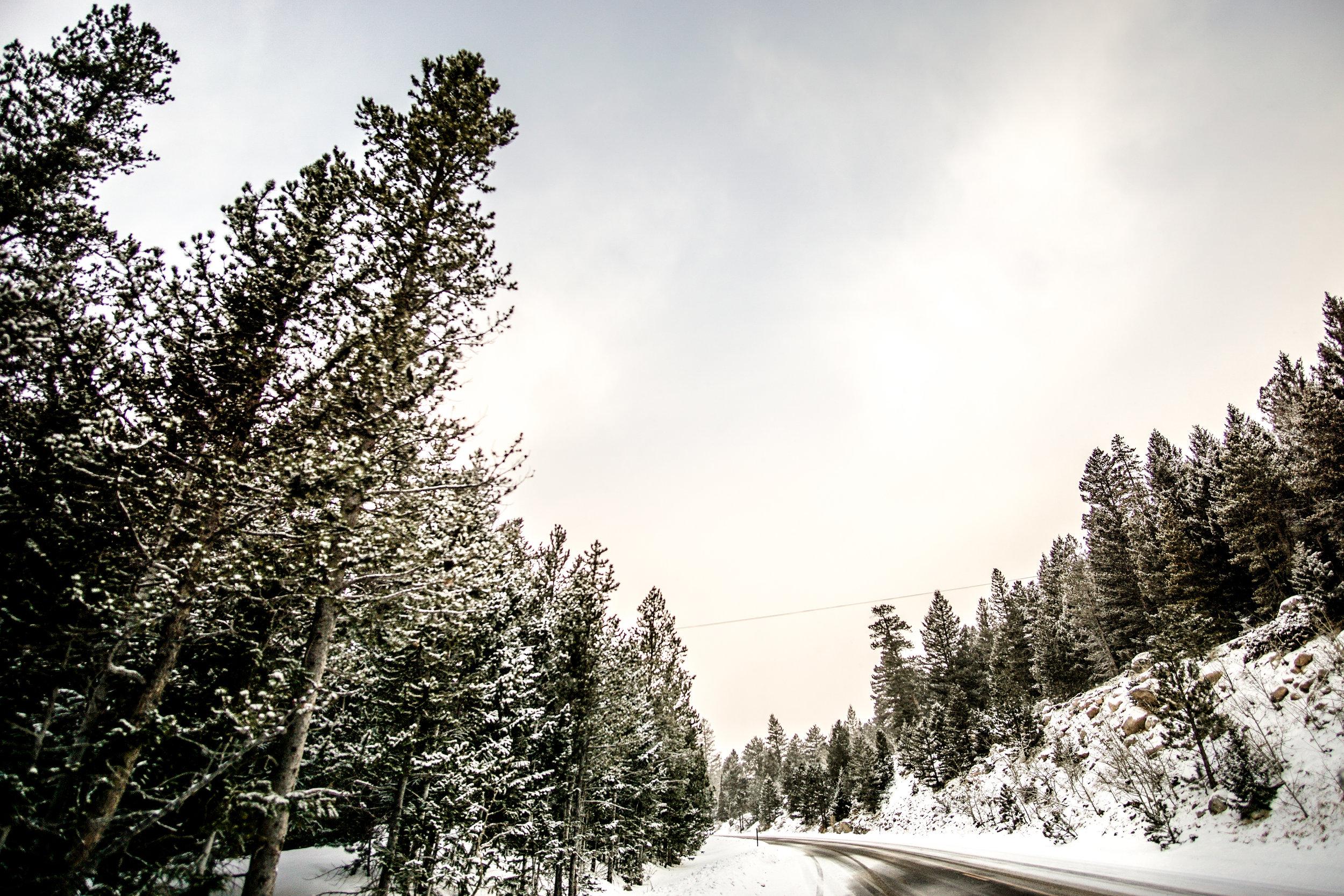 Gorgeous drive through the mountains