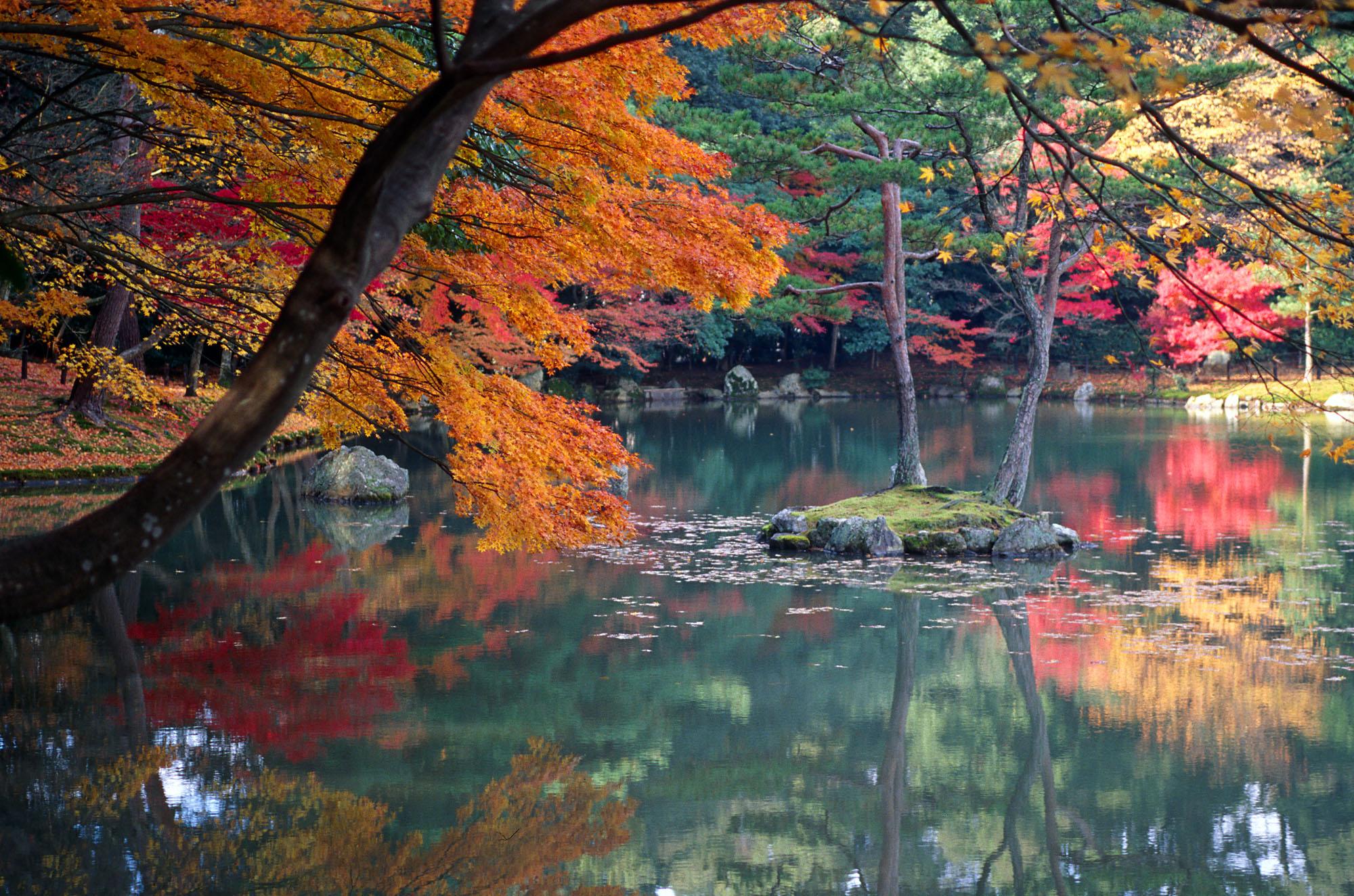 KyotoAutumn.jpg