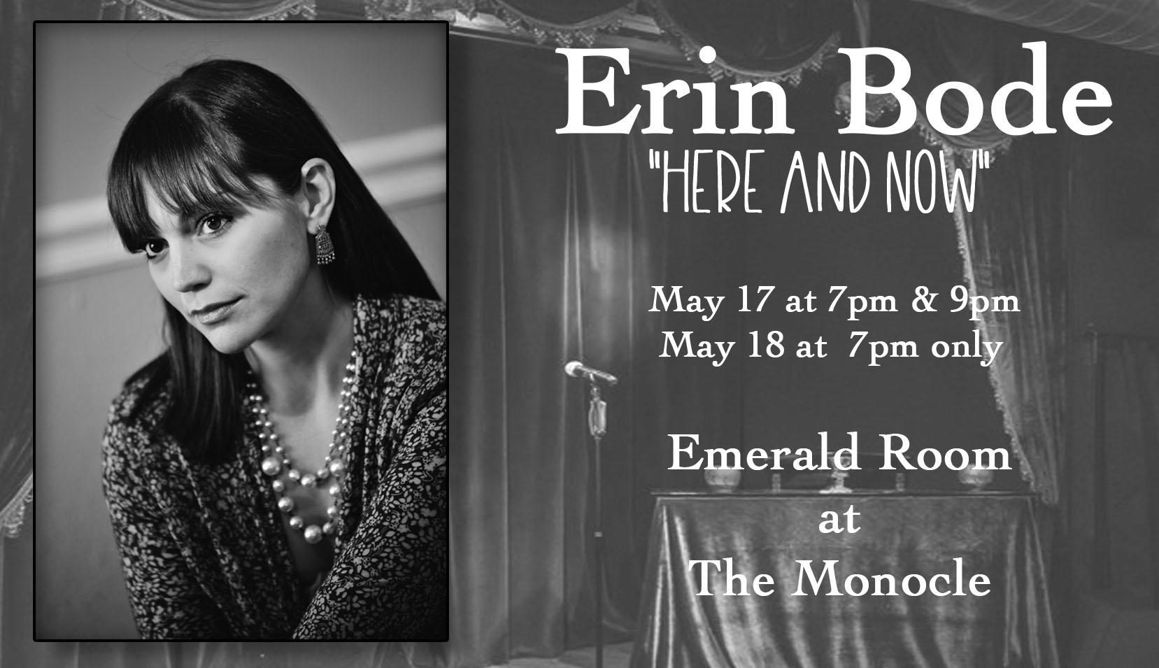Erin Bode Banner 2.jpg