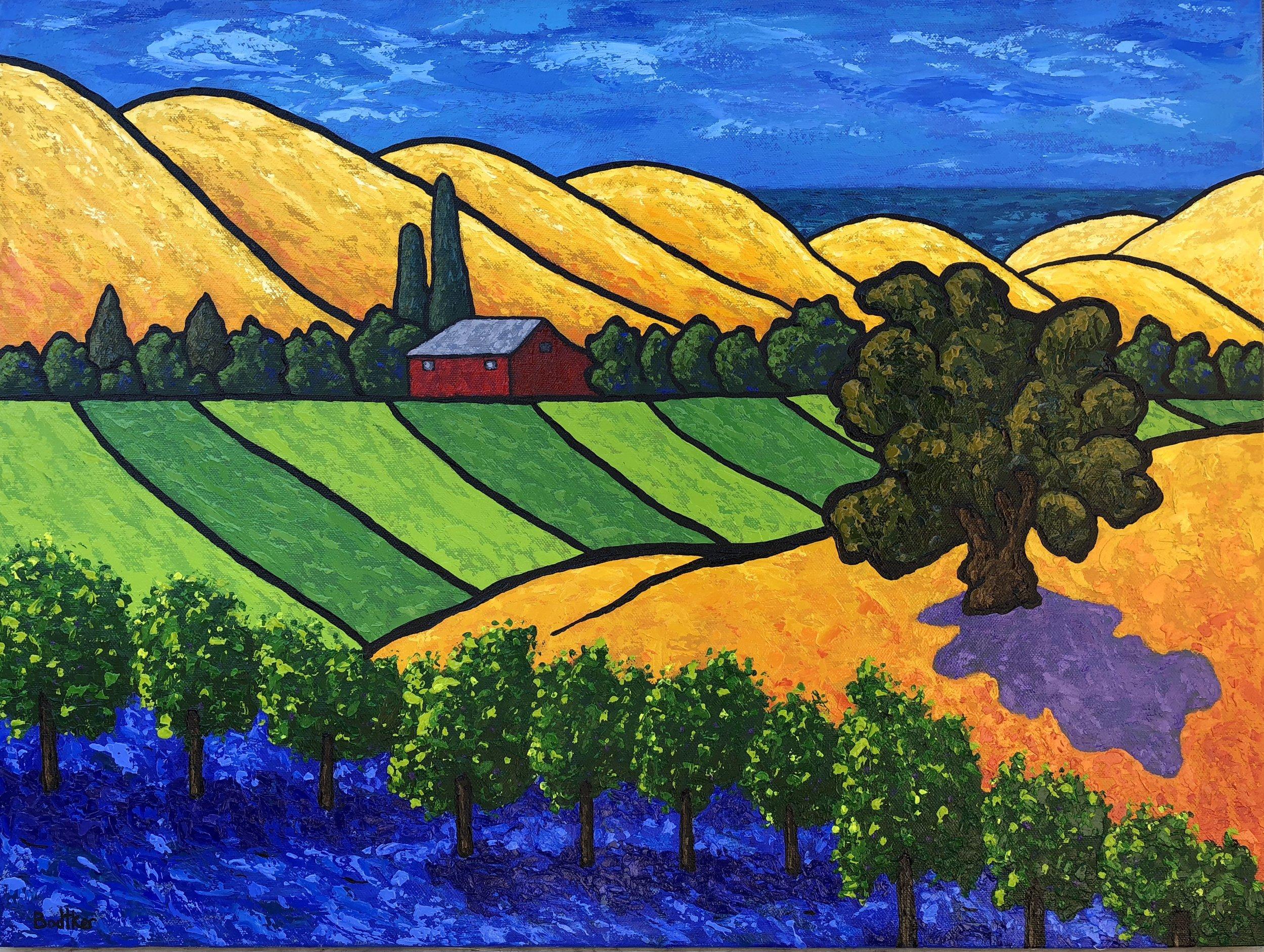 California Vineyard - 18x24