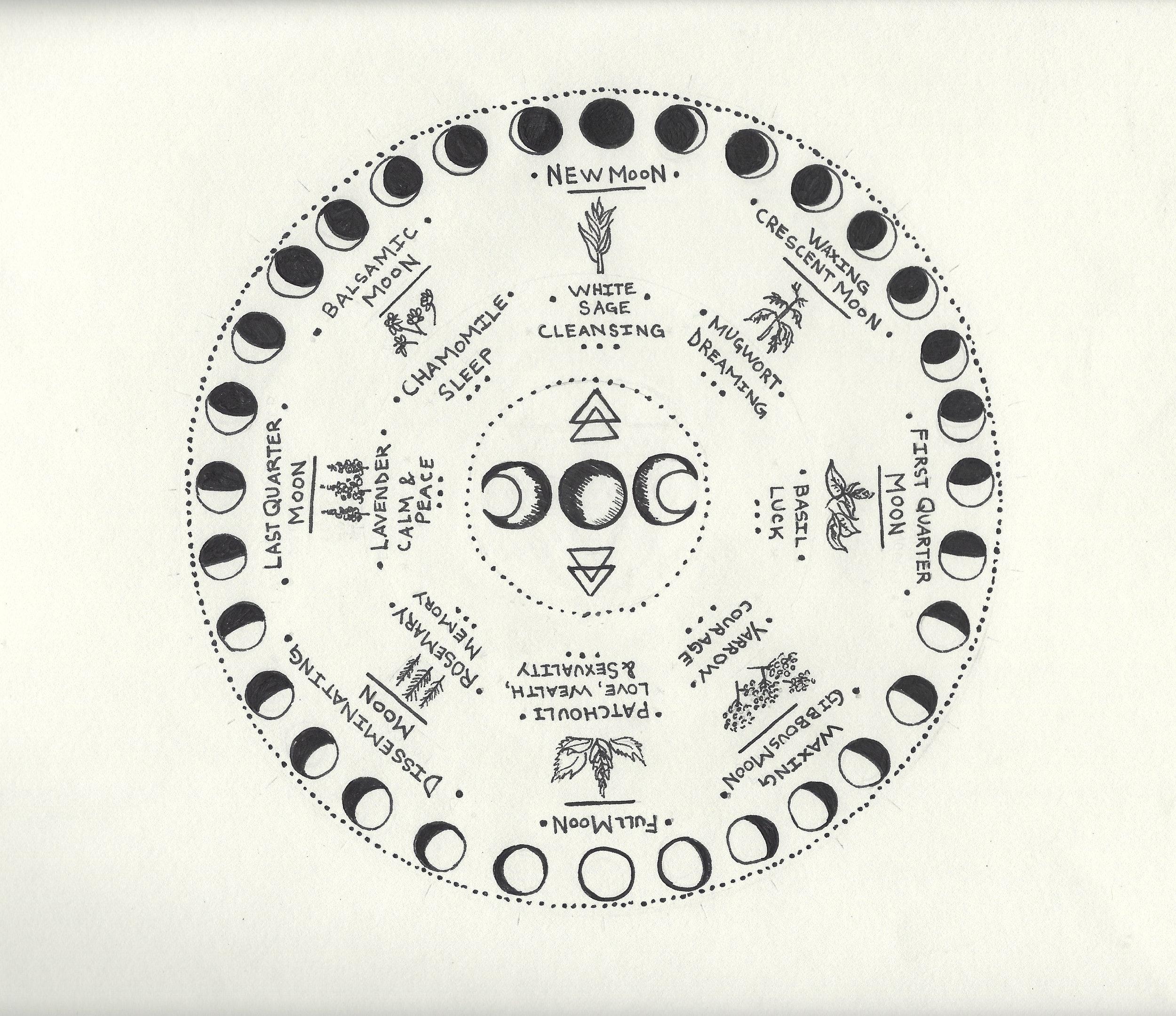 moon phases drawing.jpg
