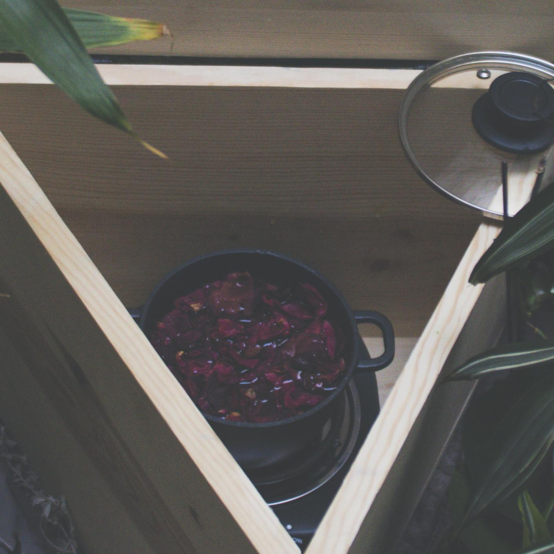 roses in pot.jpg