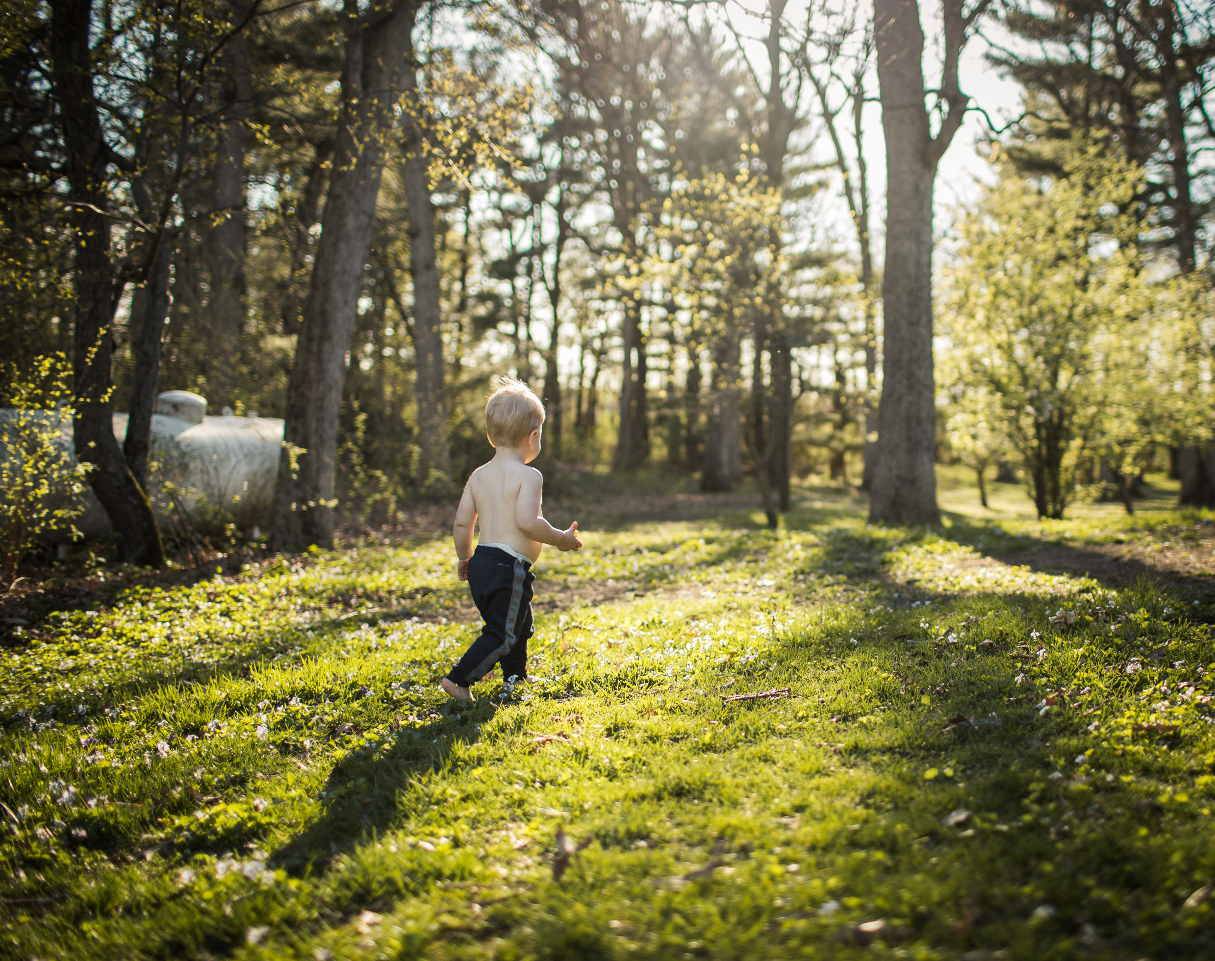 Exploring, Connected, Powerful, Lifestyle Family Sunset Session, Farm, Indiana, Laura Duggleby Photography-1.JPG