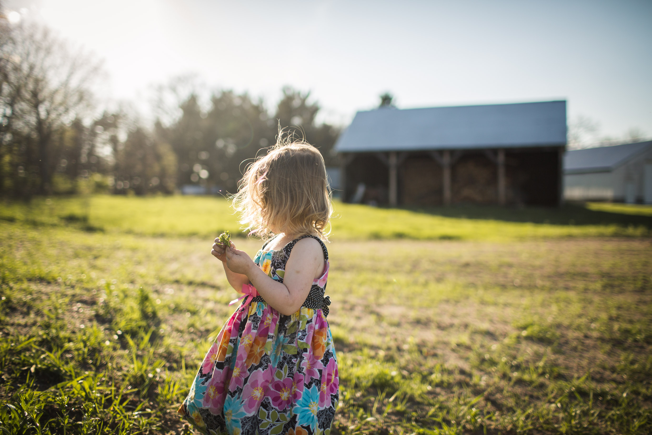 Exploring, Connected, Powerful, Lifestyle Family Sunset Session, Farm, Indiana, Laura Duggleby Photography-20.JPG
