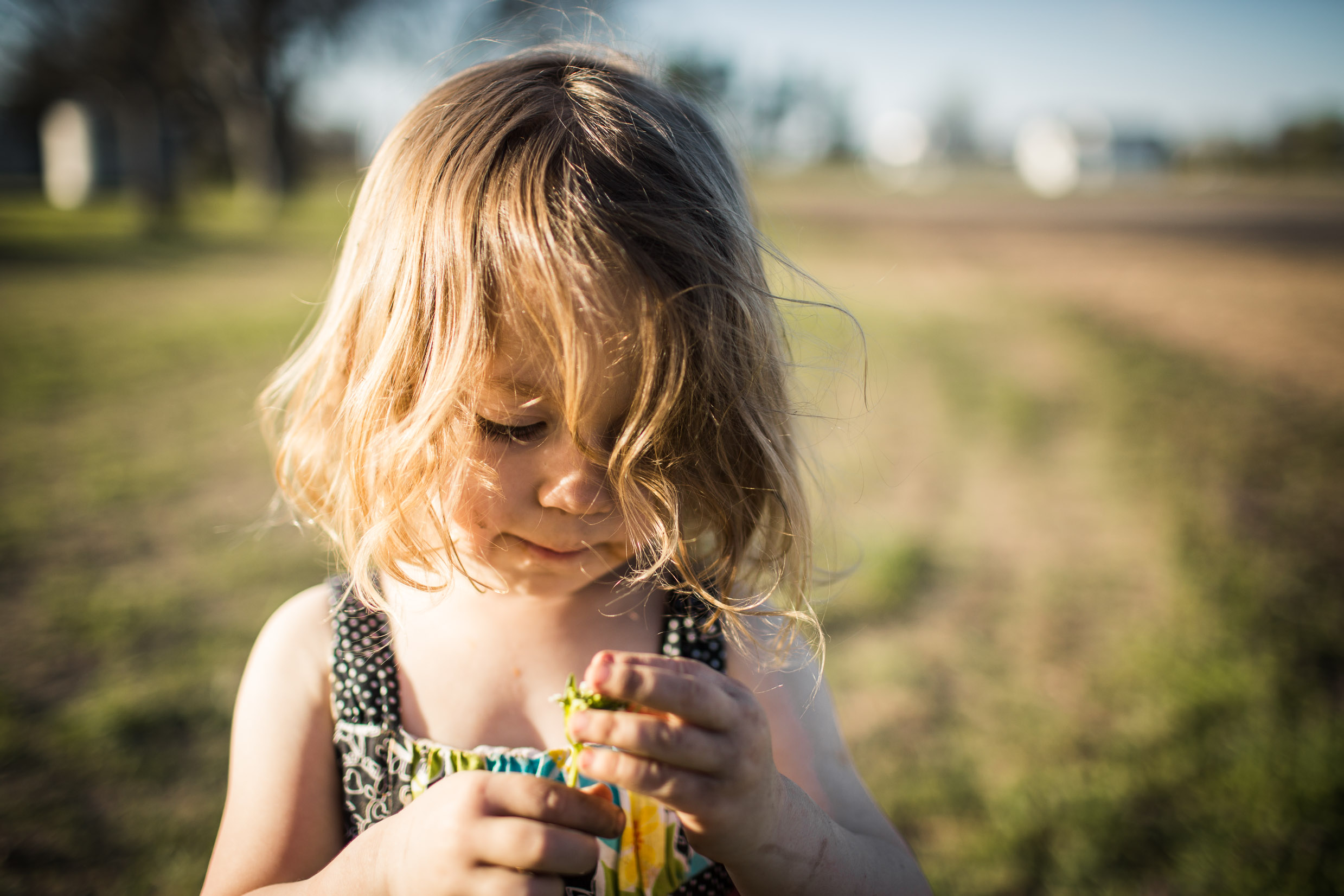 Exploring, Connected, Powerful, Lifestyle Family Sunset Session, Farm, Indiana, Laura Duggleby Photography-21.JPG