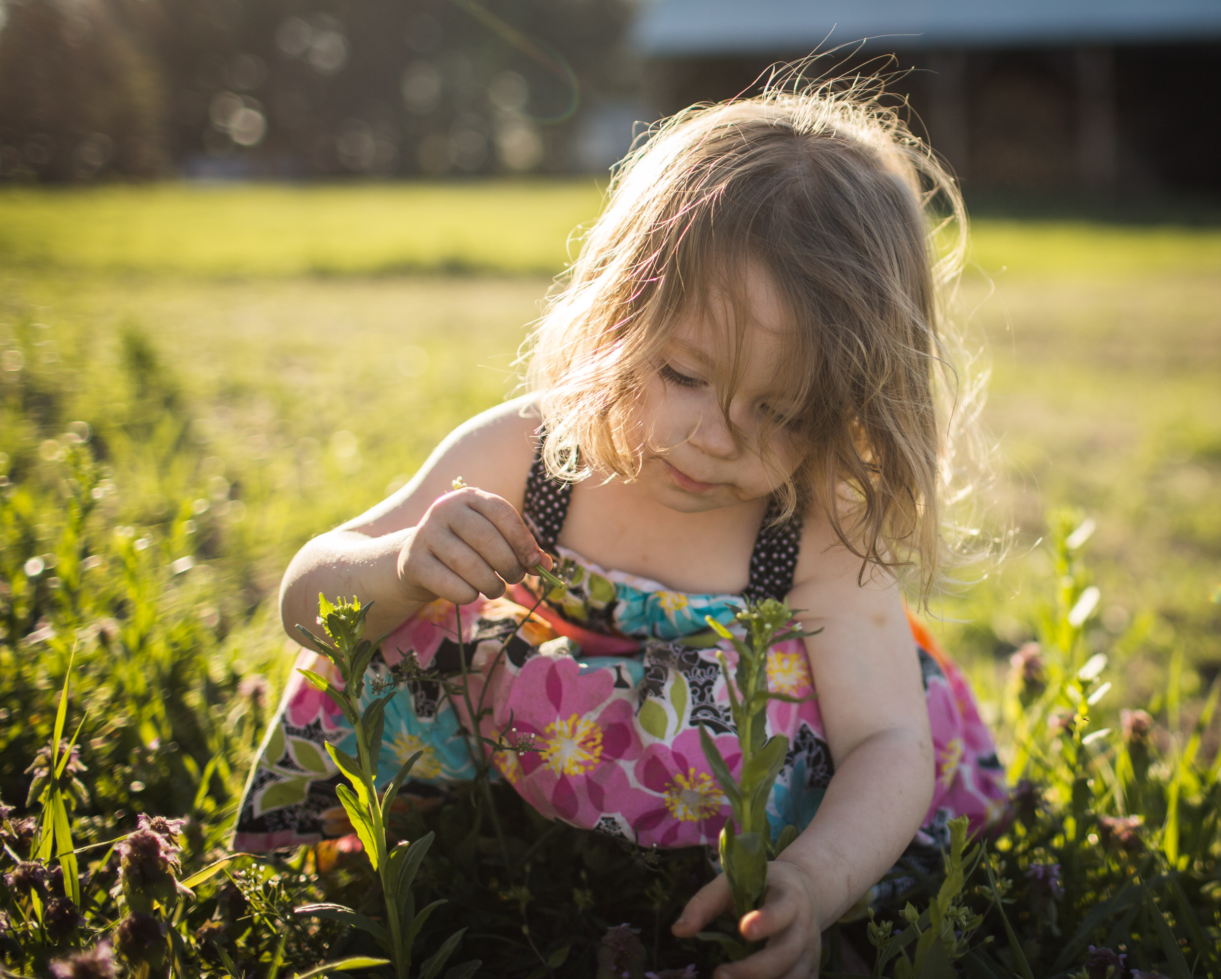 Exploring, Connected, Powerful, Lifestyle Family Sunset Session, Farm, Indiana, Laura Duggleby Photography-23.JPG