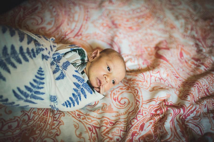 newborn child pondering out soft window light