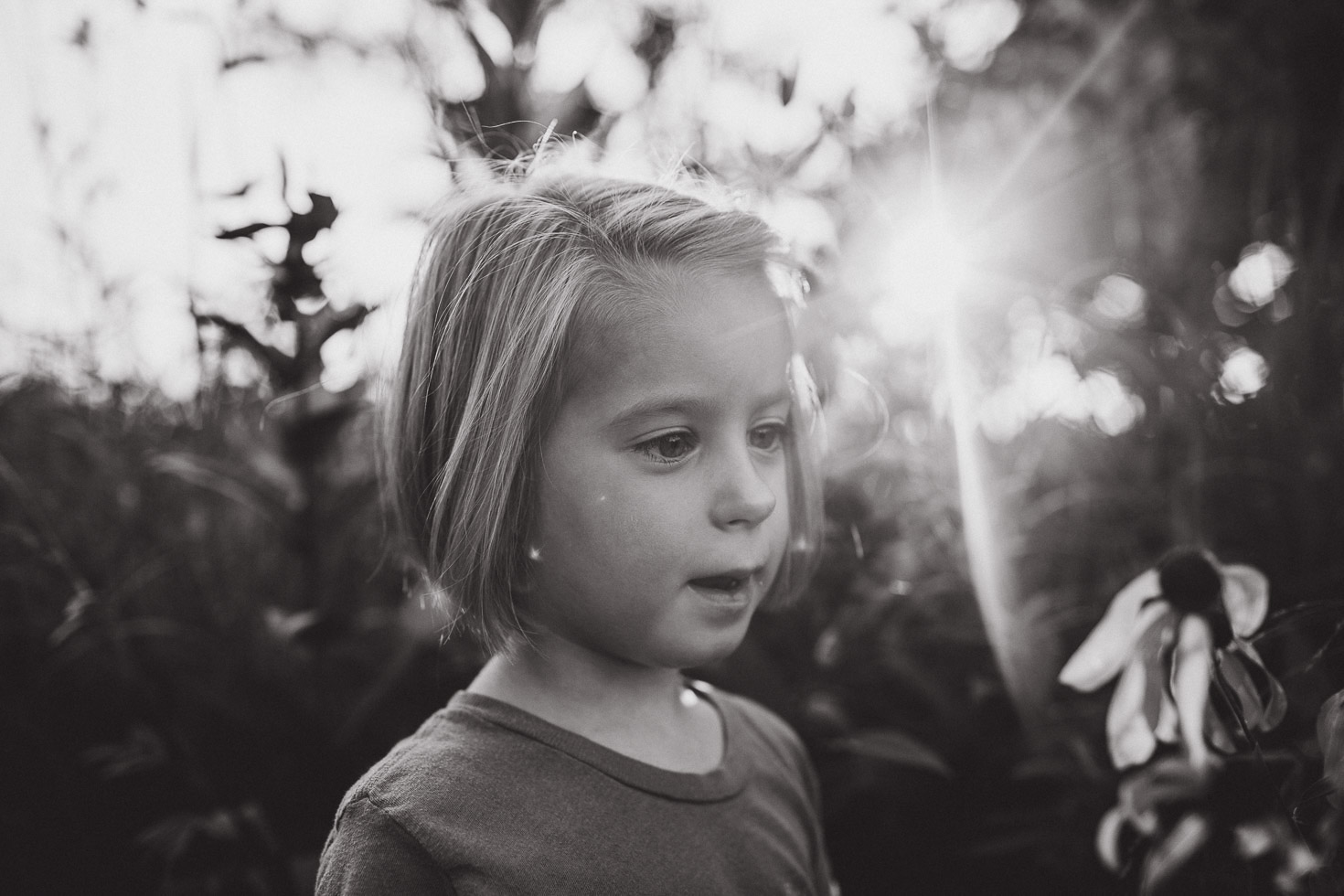 girl admiring flowers in field, with sun flare behind, black and white