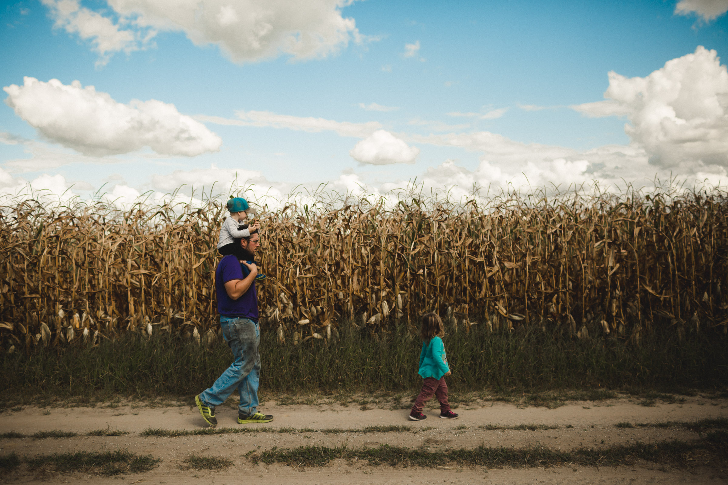 Family walking together along corn rows, with boy on dad's shoulders