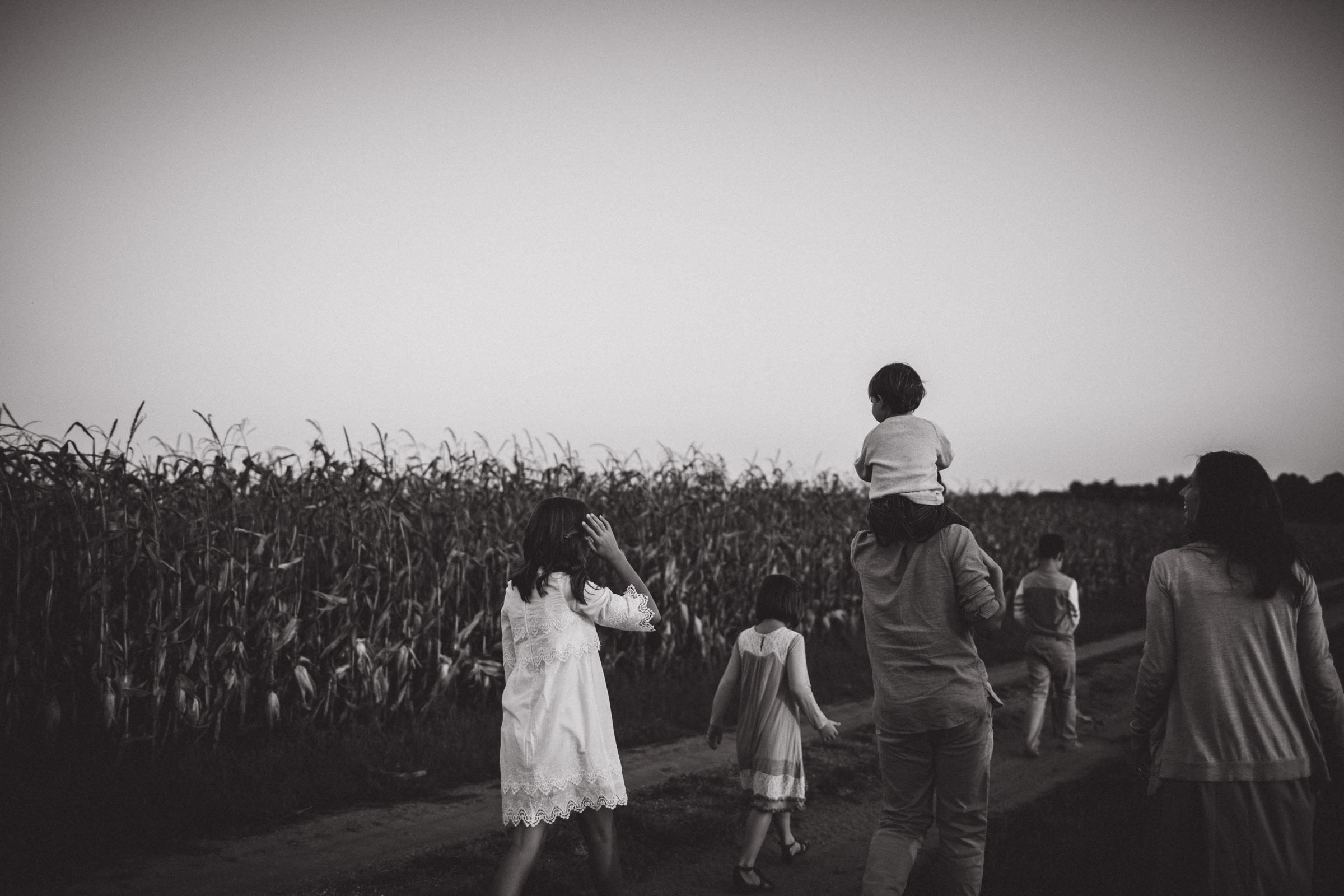 family walking together along cornfields