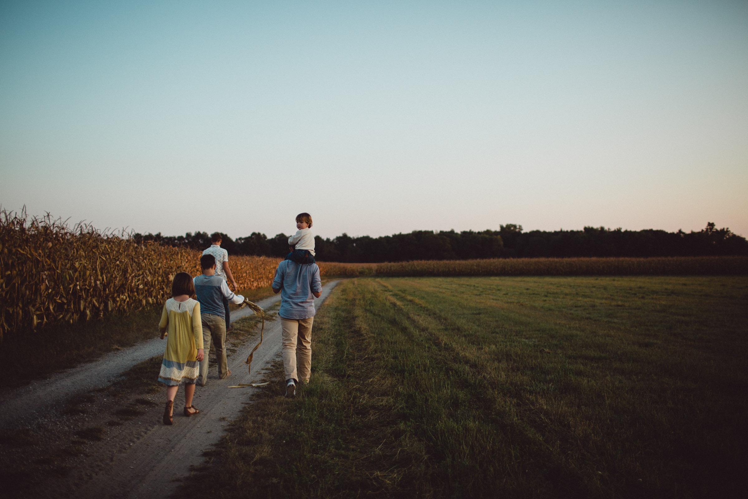 siblings walking together through cornfields