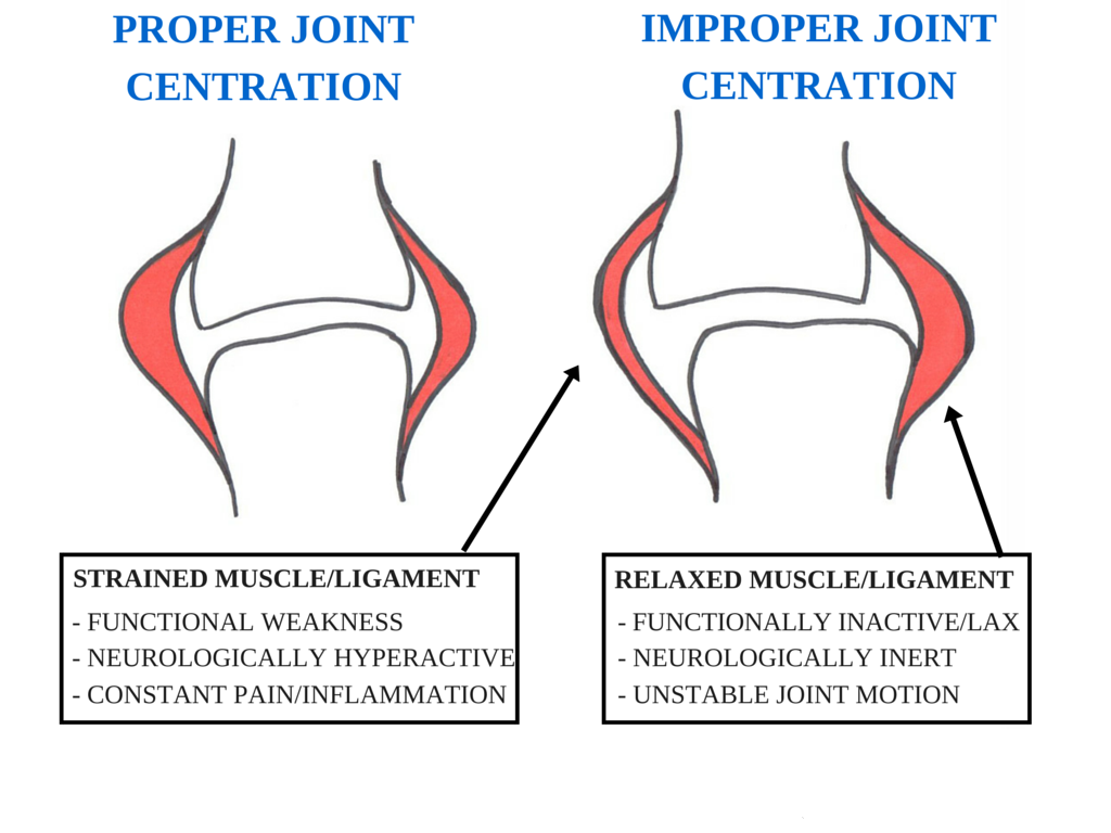 joint centration chiroptractor chiropractic burke.png