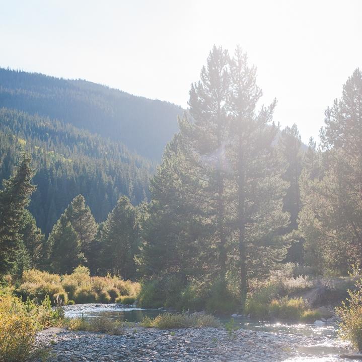 green, spring colorado mountain landscape from lookout mountain near golden, colorado