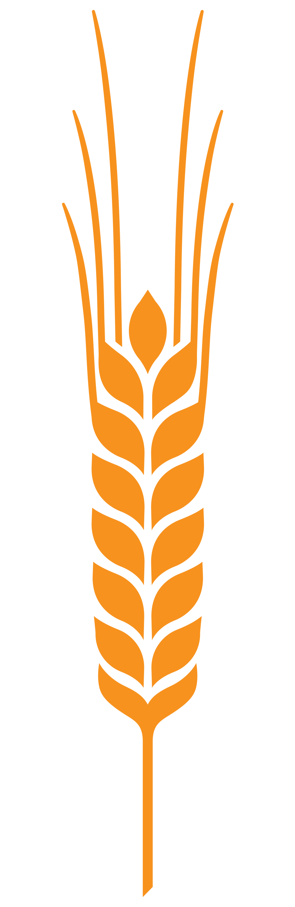 Settepani_Wheat.png