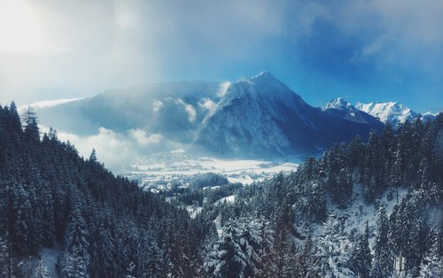 winter+yin+image.jpg