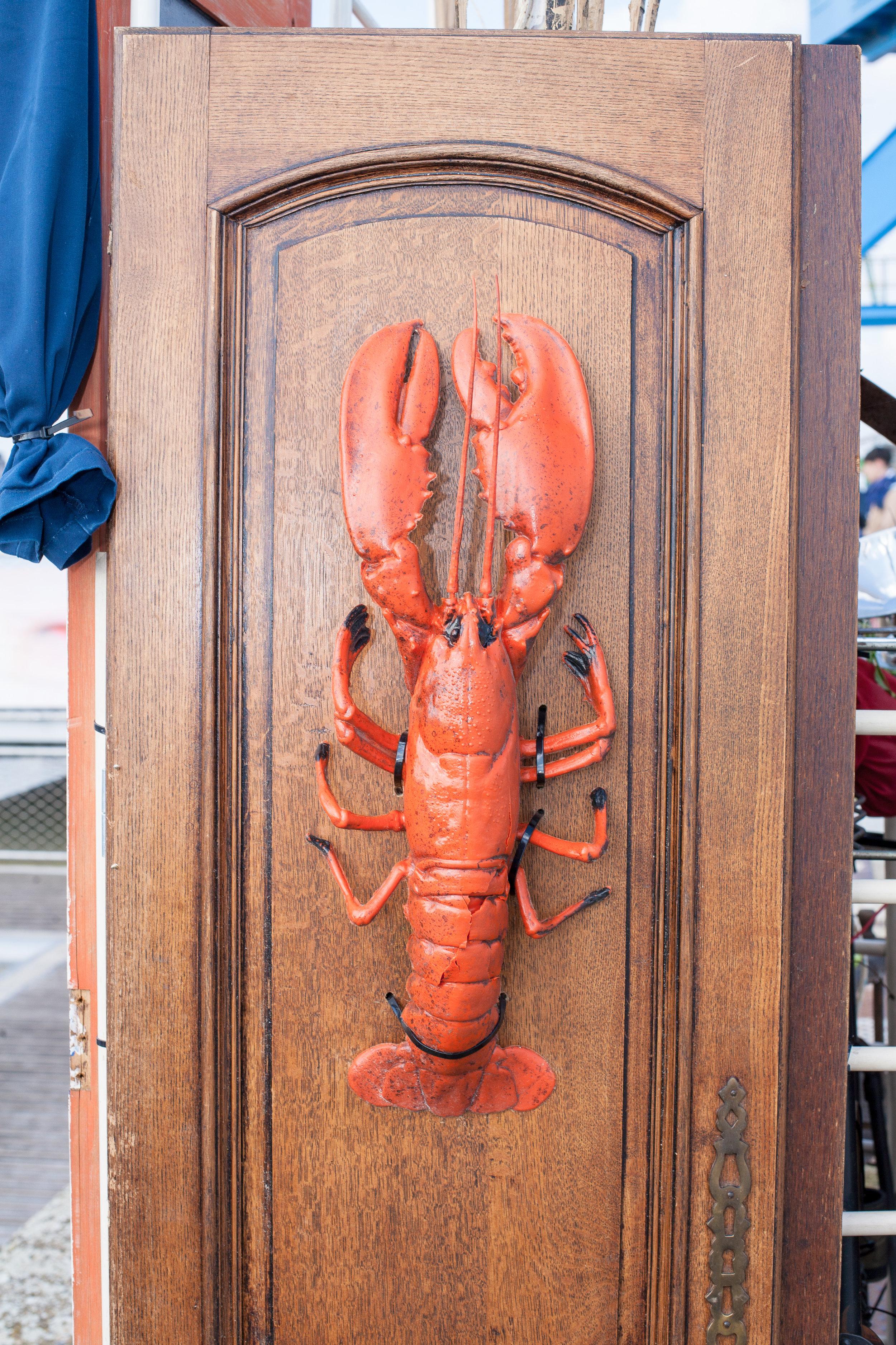 Old lobster
