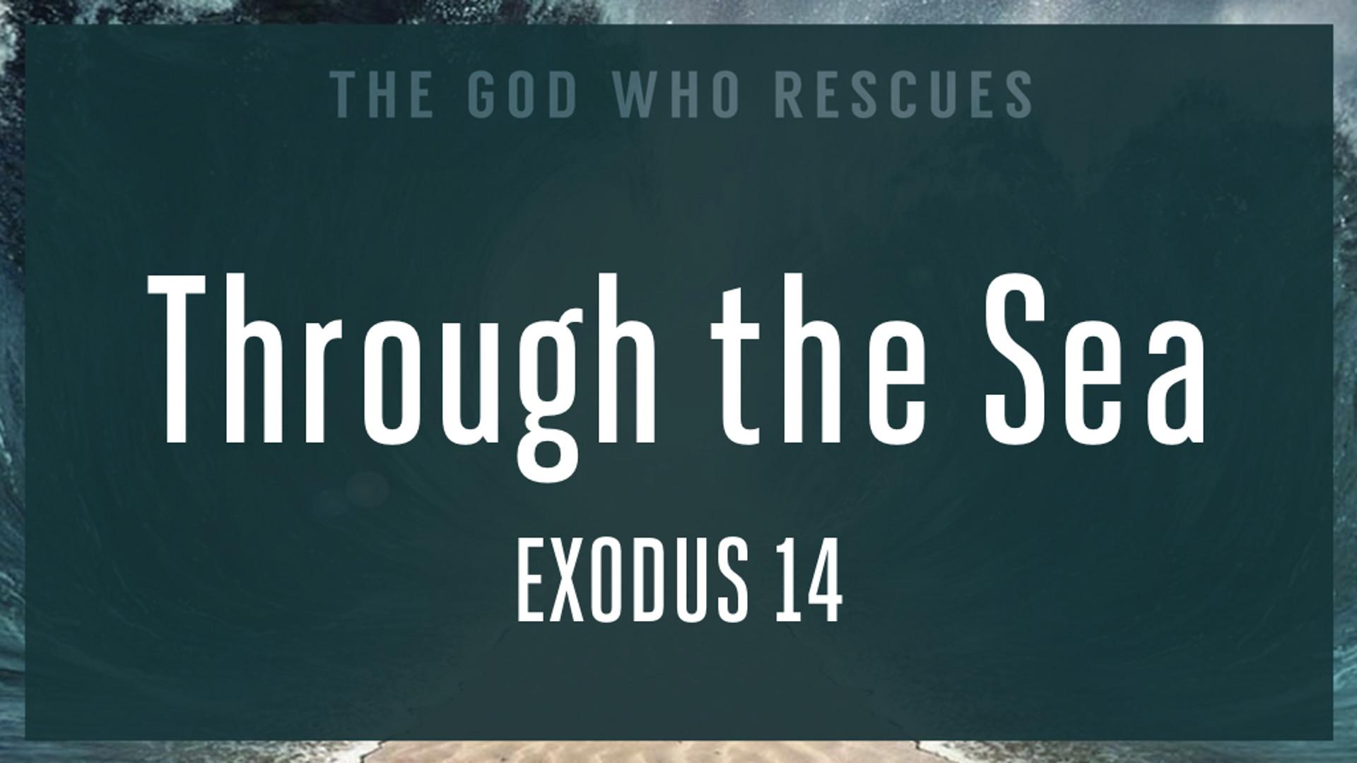 Exodus 14 Through the Sea.jpg