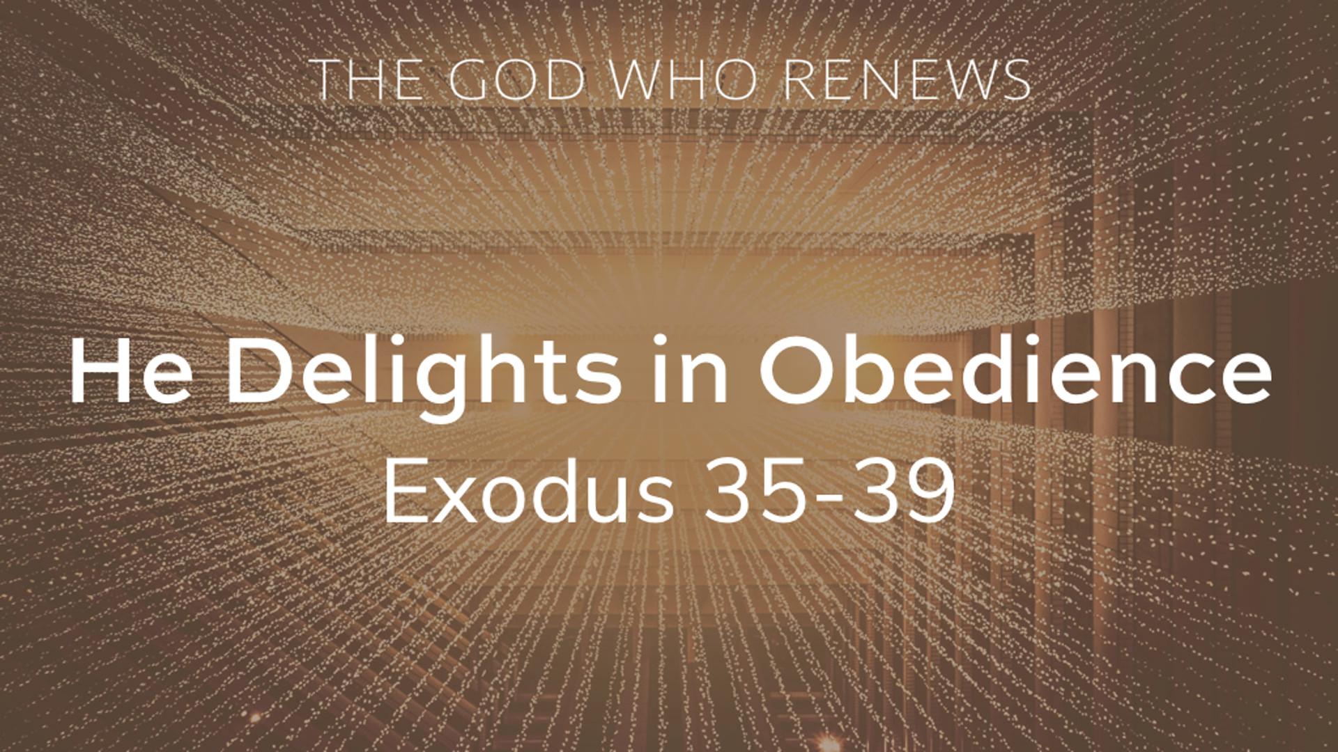 Exodus 35-39 - He Delights in Obedience.jpg