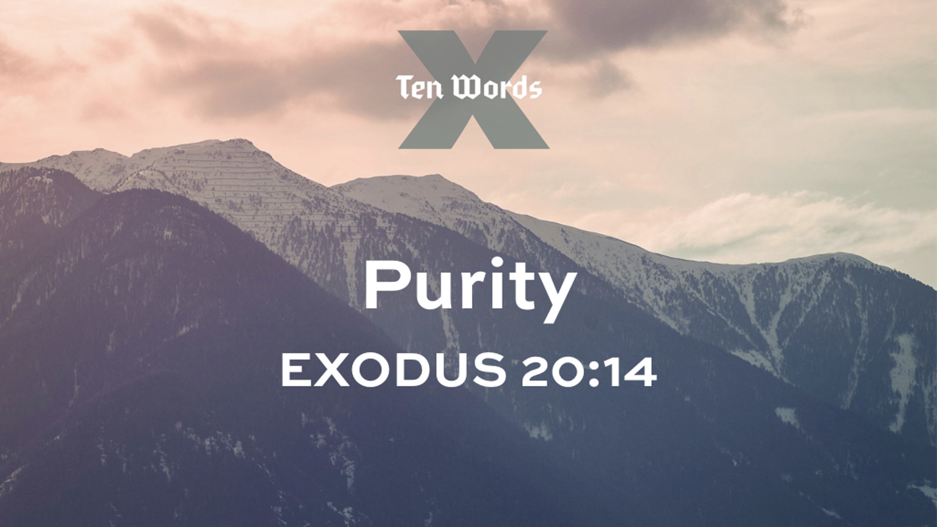 7 Purity - Ex 20.14.jpg