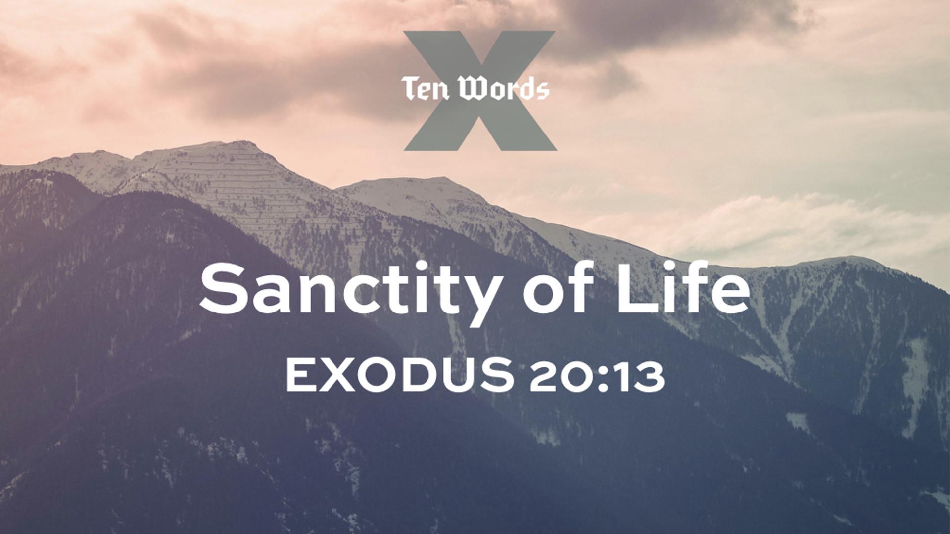 6 Sanctity of Life - Ex 20.13.jpg
