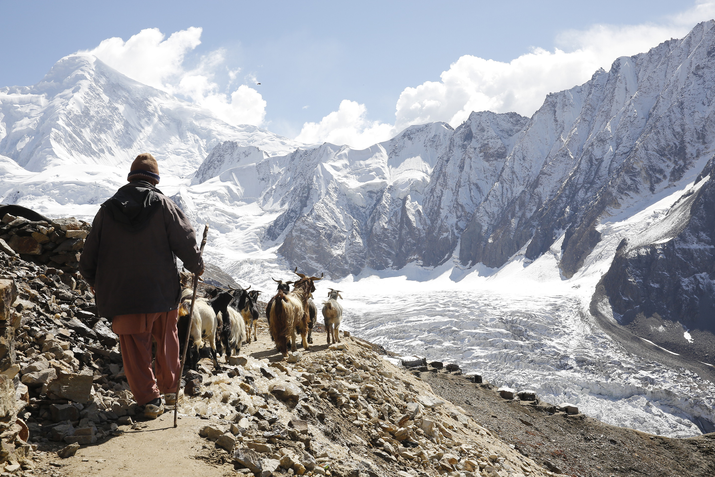 Goat Trader, Karakorum Range, Northern Pakistan, 2015