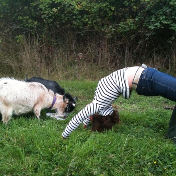 Poser, My Life in Twenty-Three Yoga Poses