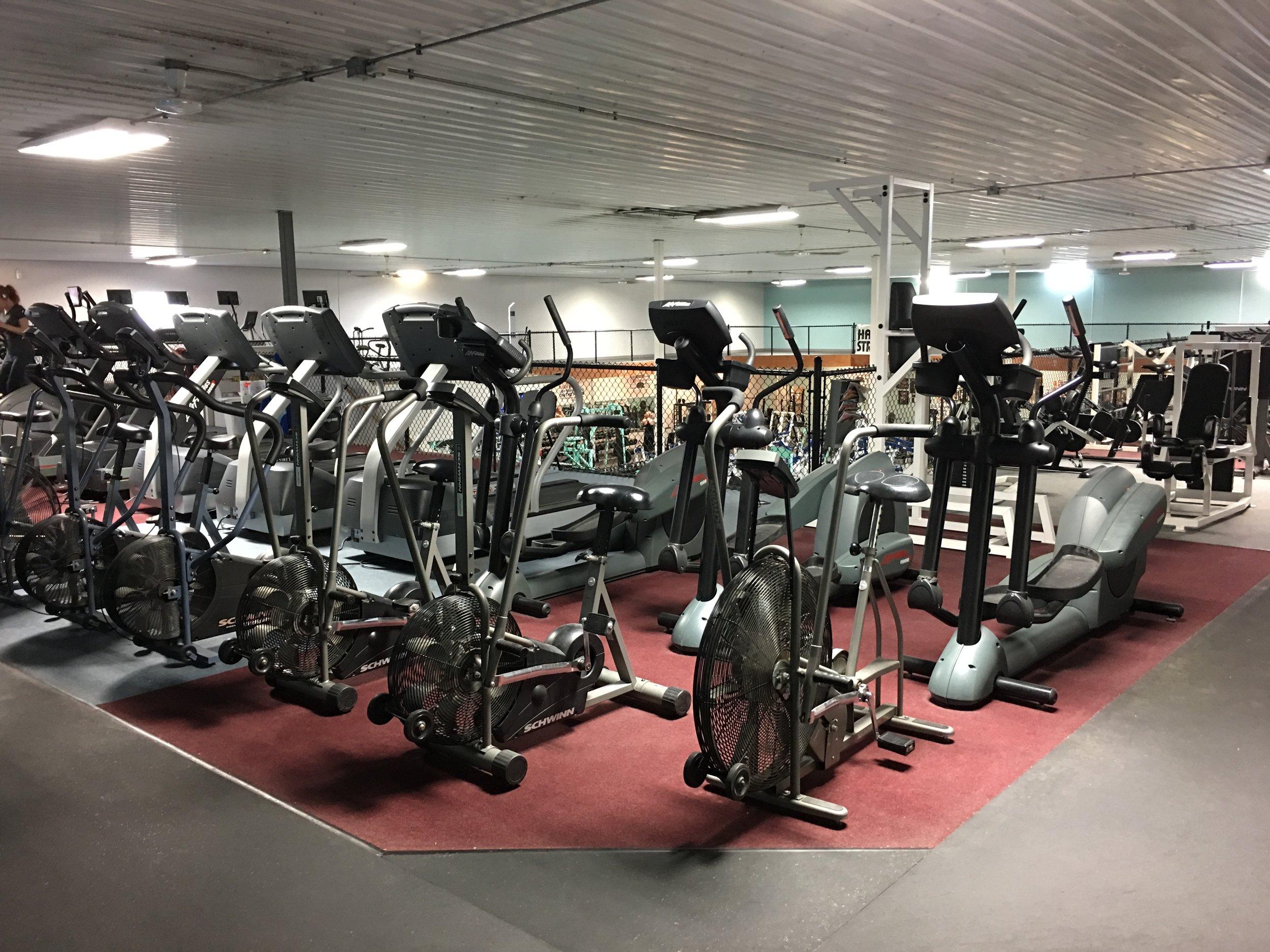 Cardio: Bikes, Treadmills & Elipticals