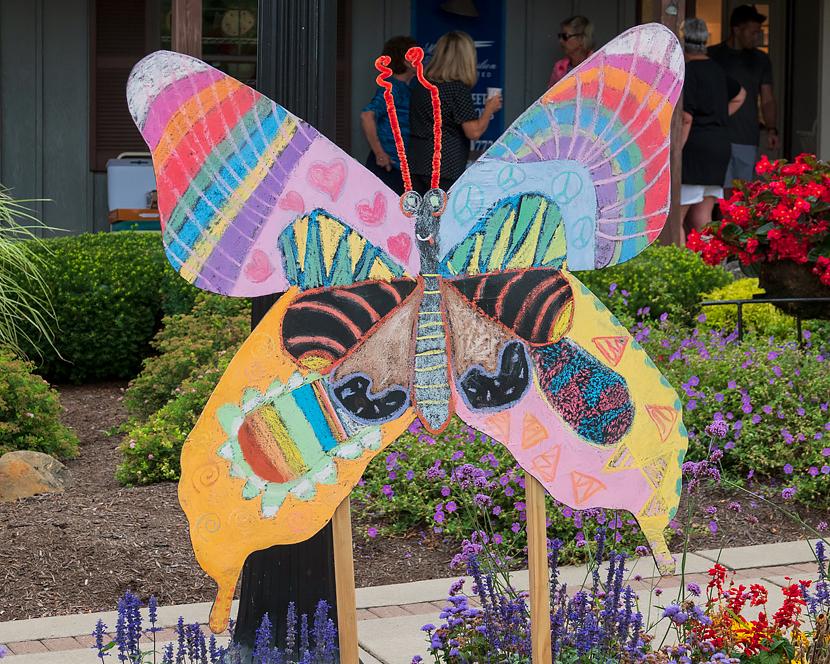 SMALL_35_Butterfly.jpg