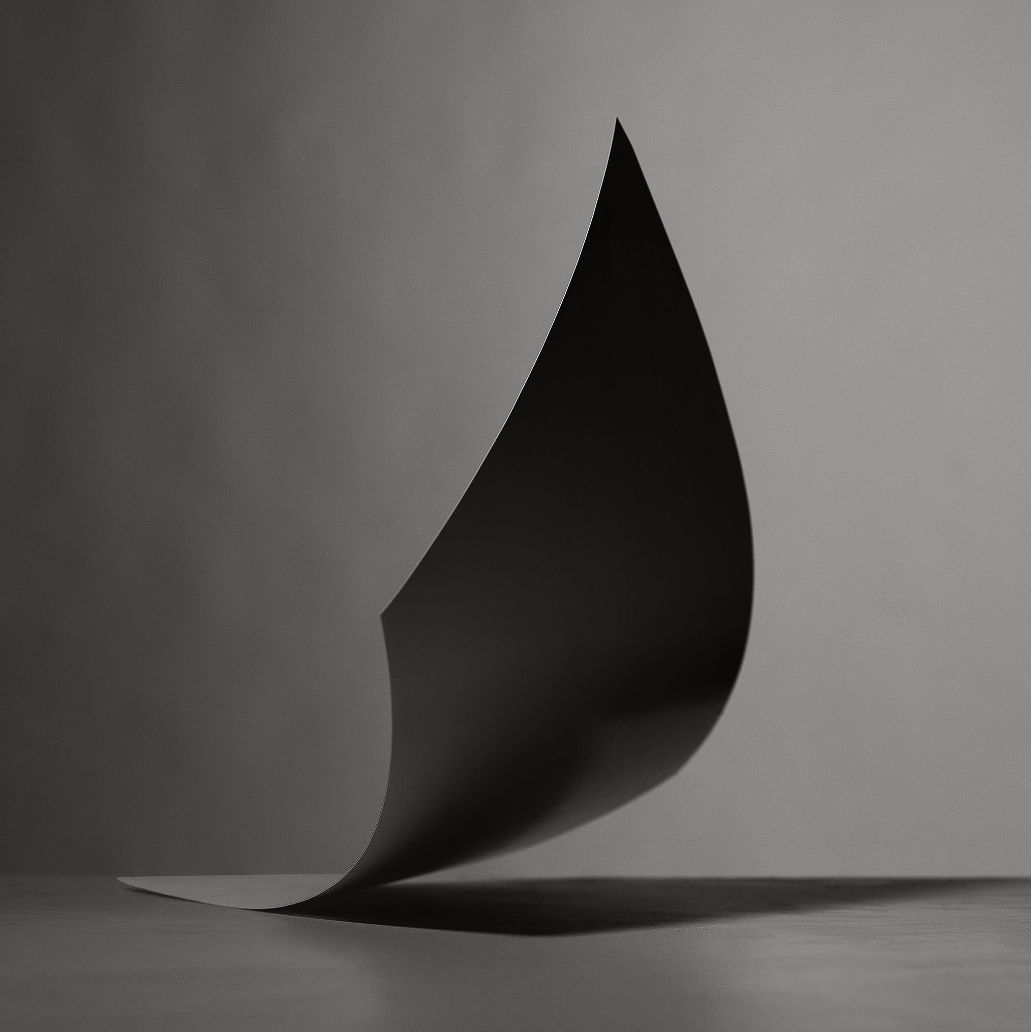 StillLifePhotographyPaperSculpture4.jpg