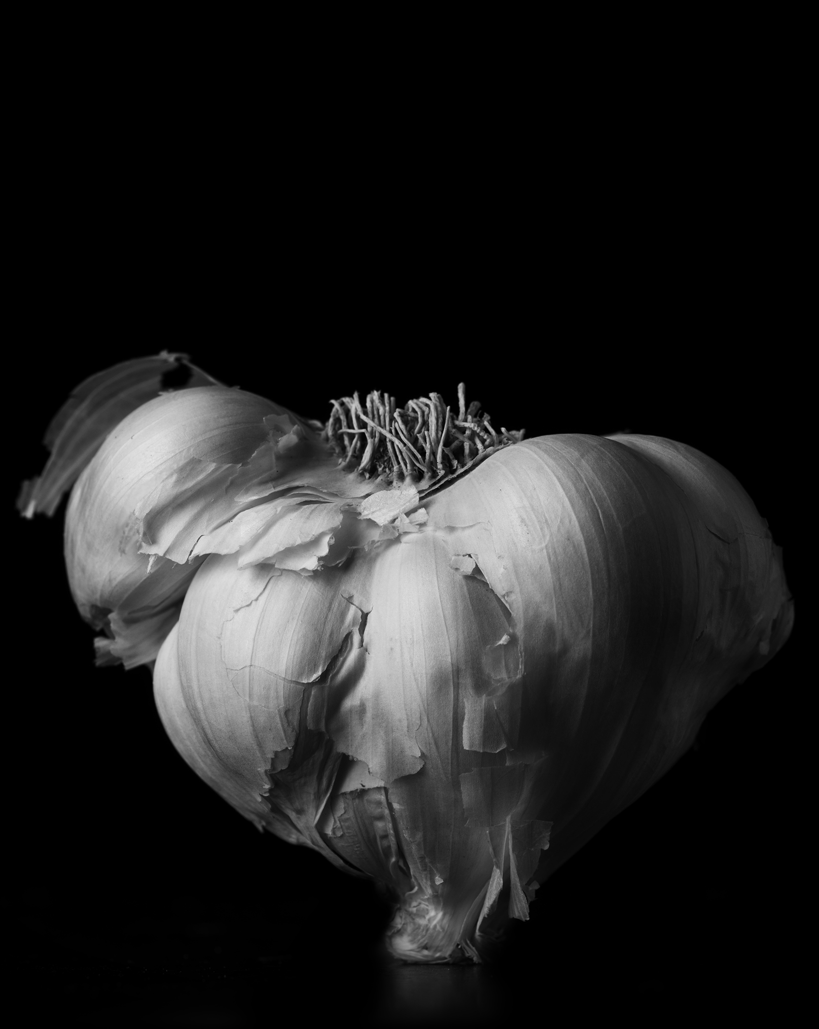 Garlic_0067.jpg