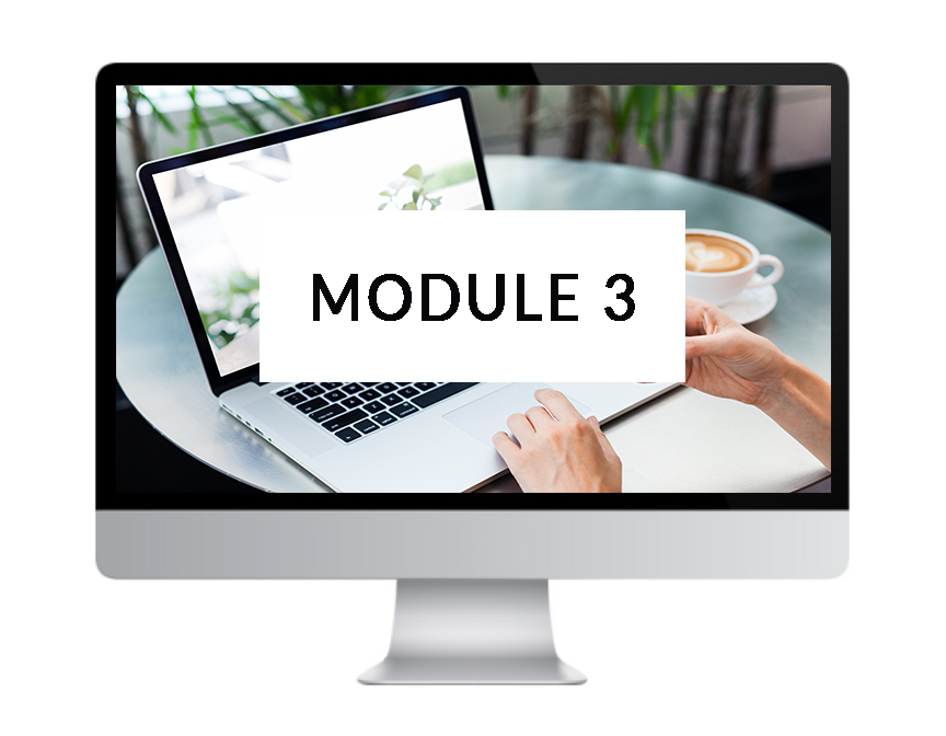 MODULE 3: SITE CONSTRUCTION - ▸ Creating a Coming Soon page▸ Settings + social media accounts▸ Site styling: layout, logo, colours & fonts▸ Setting up pages & navigation▸ Building a page from scratch▸ Custom form setup▸ Setting up a shop