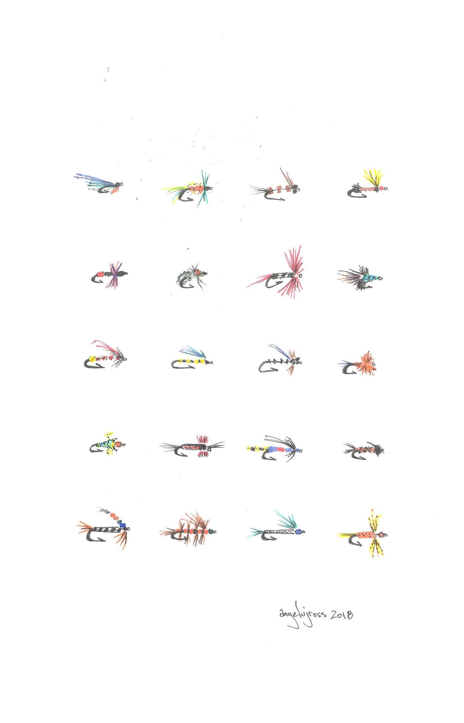 Pap's flies.  Pen and ink