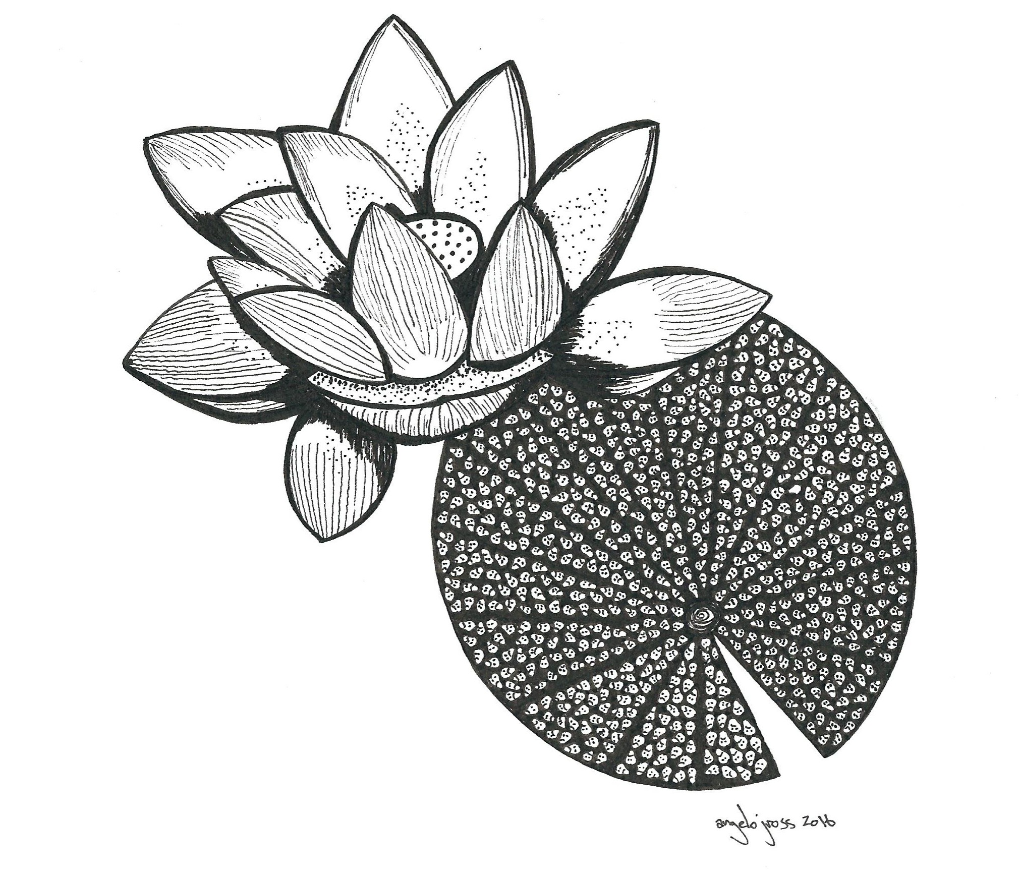 Creepy Lotus.  Pen and ink