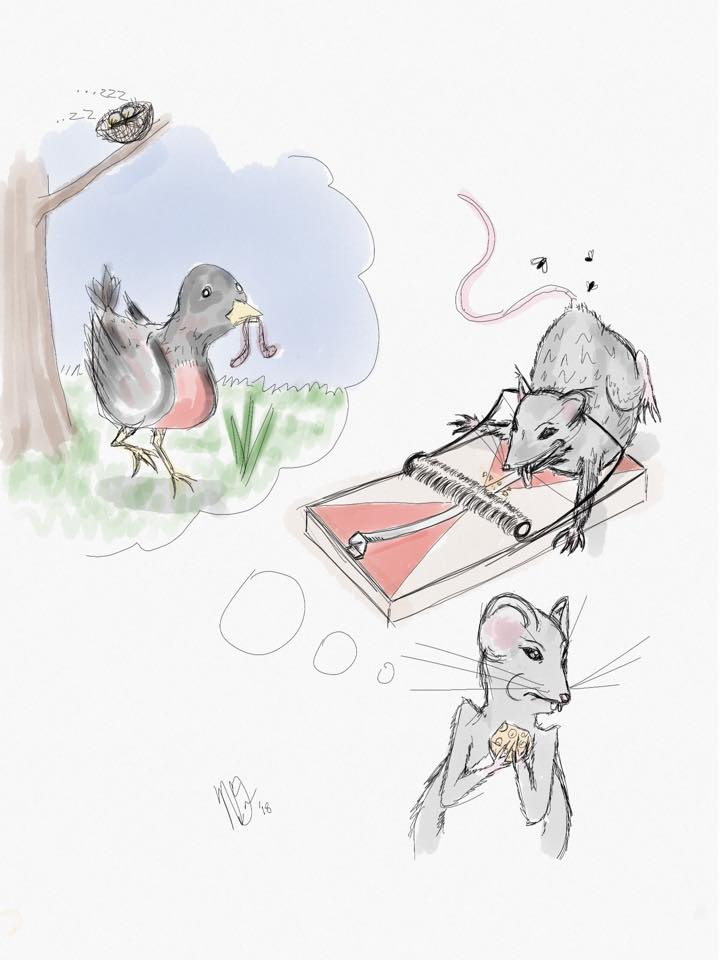 Early Bird Gets the Worm, Late Mouse Gets the Cheese