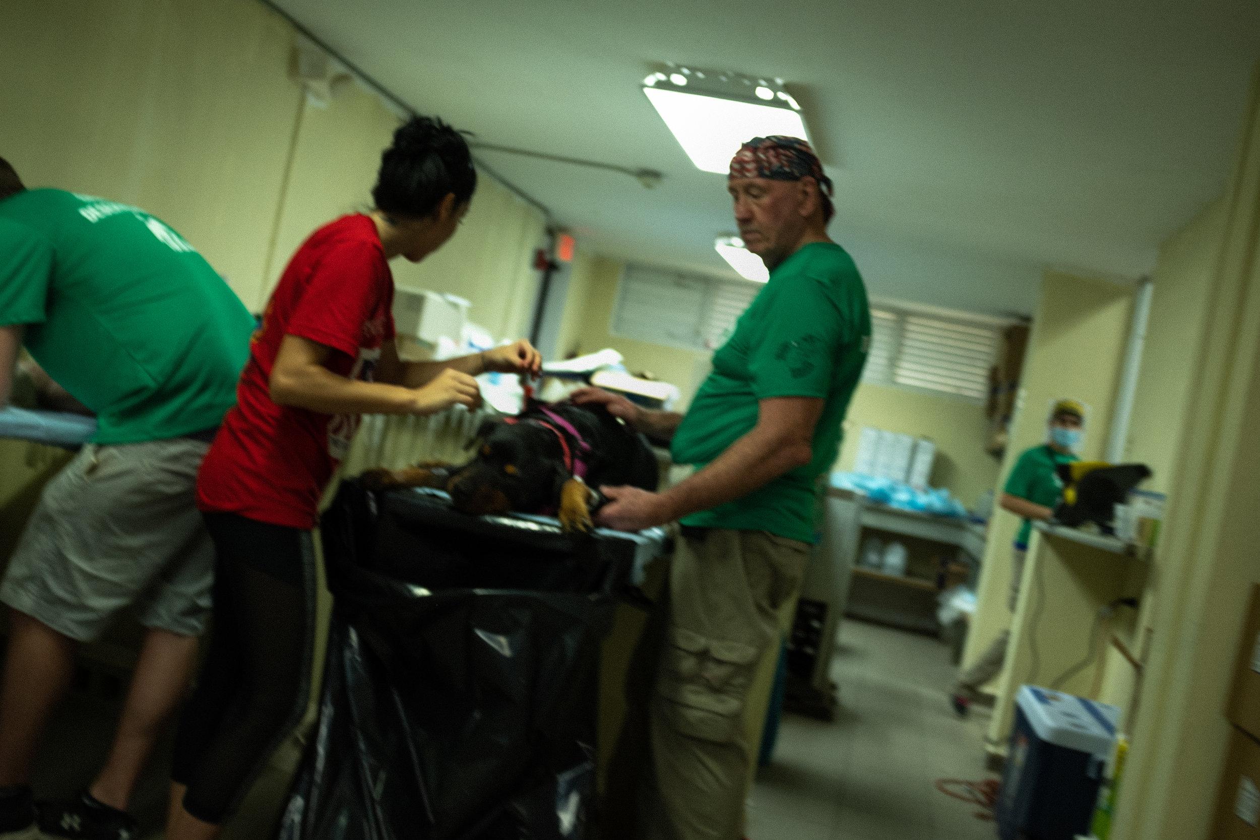 Surgery room, Ceiba