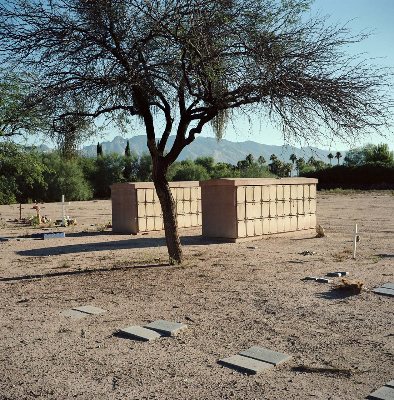 Tucson Cemetary by Andrew Cullen