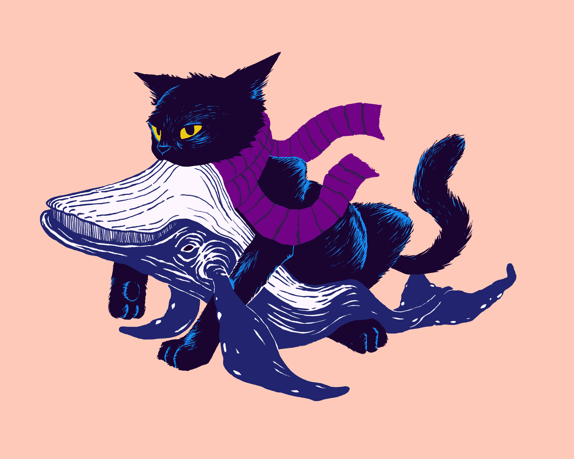 cat-whale.jpg