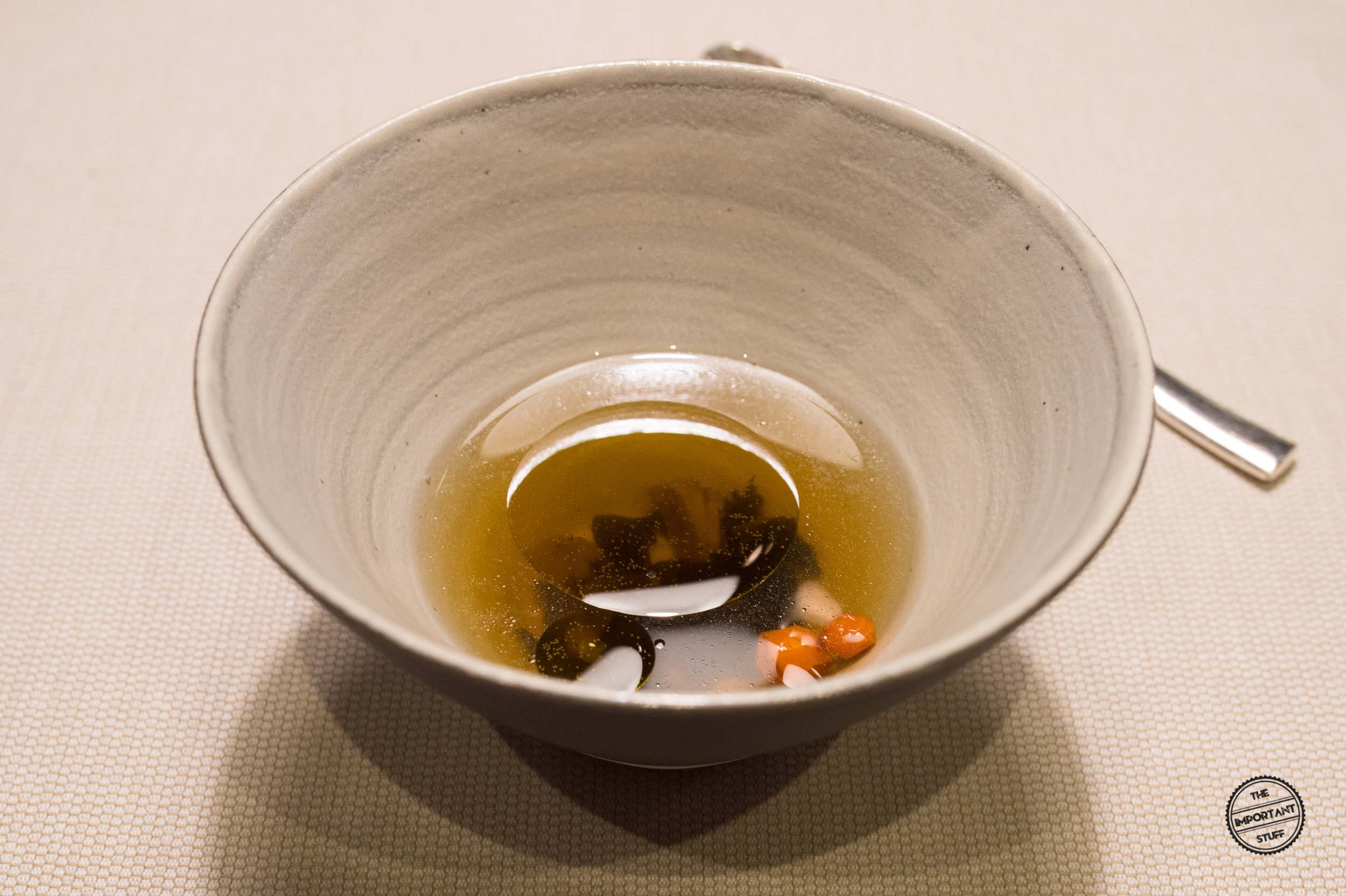 terra_heinrich_schneider_terra_tea