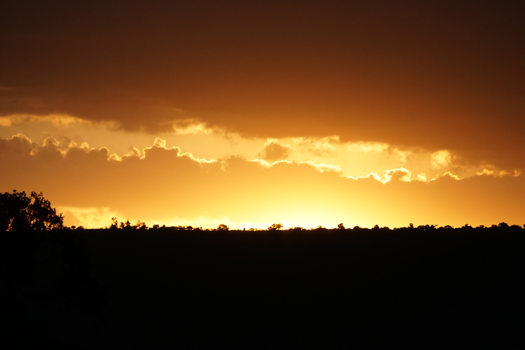 Mara Sunset 30X20.jpg