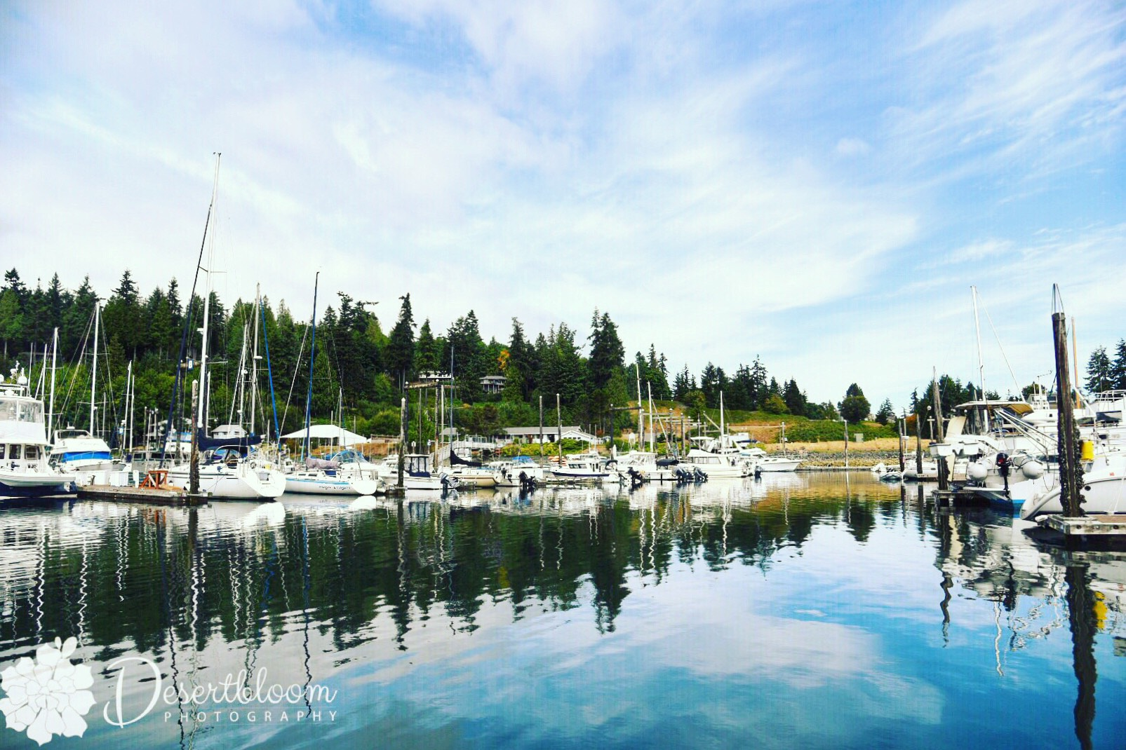 Love this view of Port Ludlow Marina on the Olympic Peninsula