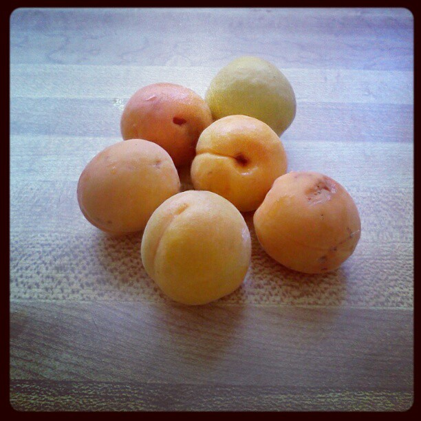 Oh those Instagram filters! This looks like the butcher block counters in the Little Blue House in Colorado. I think these apricots were from our tree. I was a food photographer way back when….