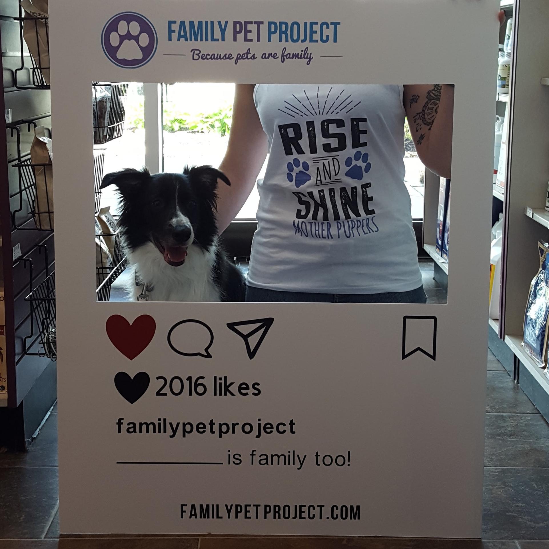 Social Cutout Family Pet Project.jpg