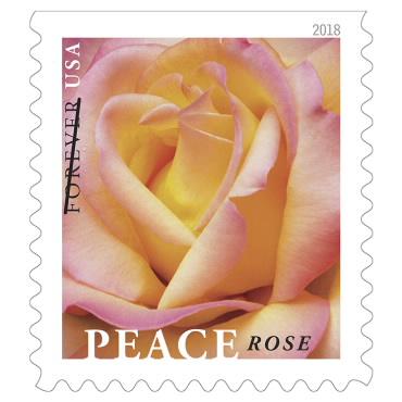 1 oz. Forever Stamp - Peace Rose - $0.55