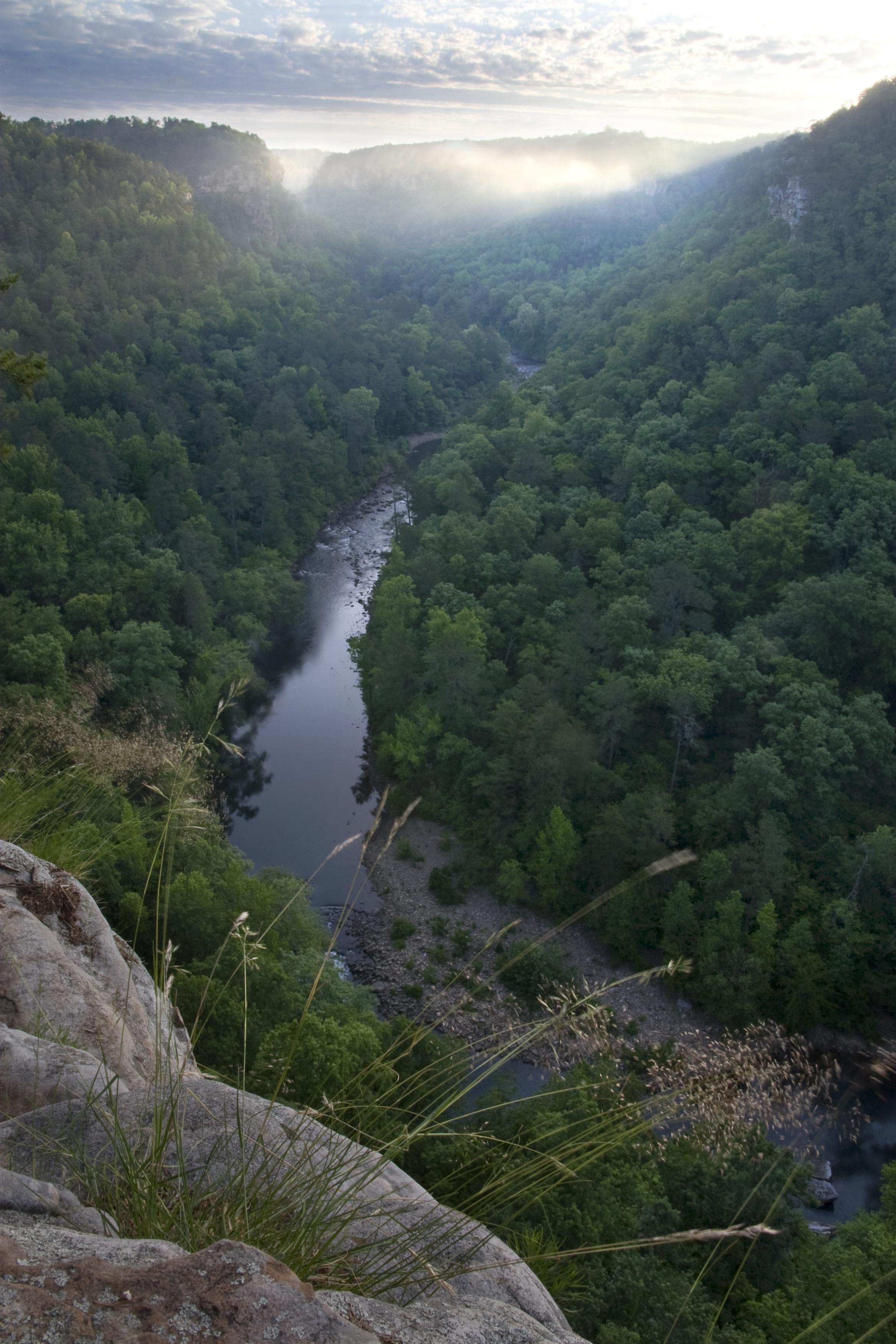 The Canyon.jpg