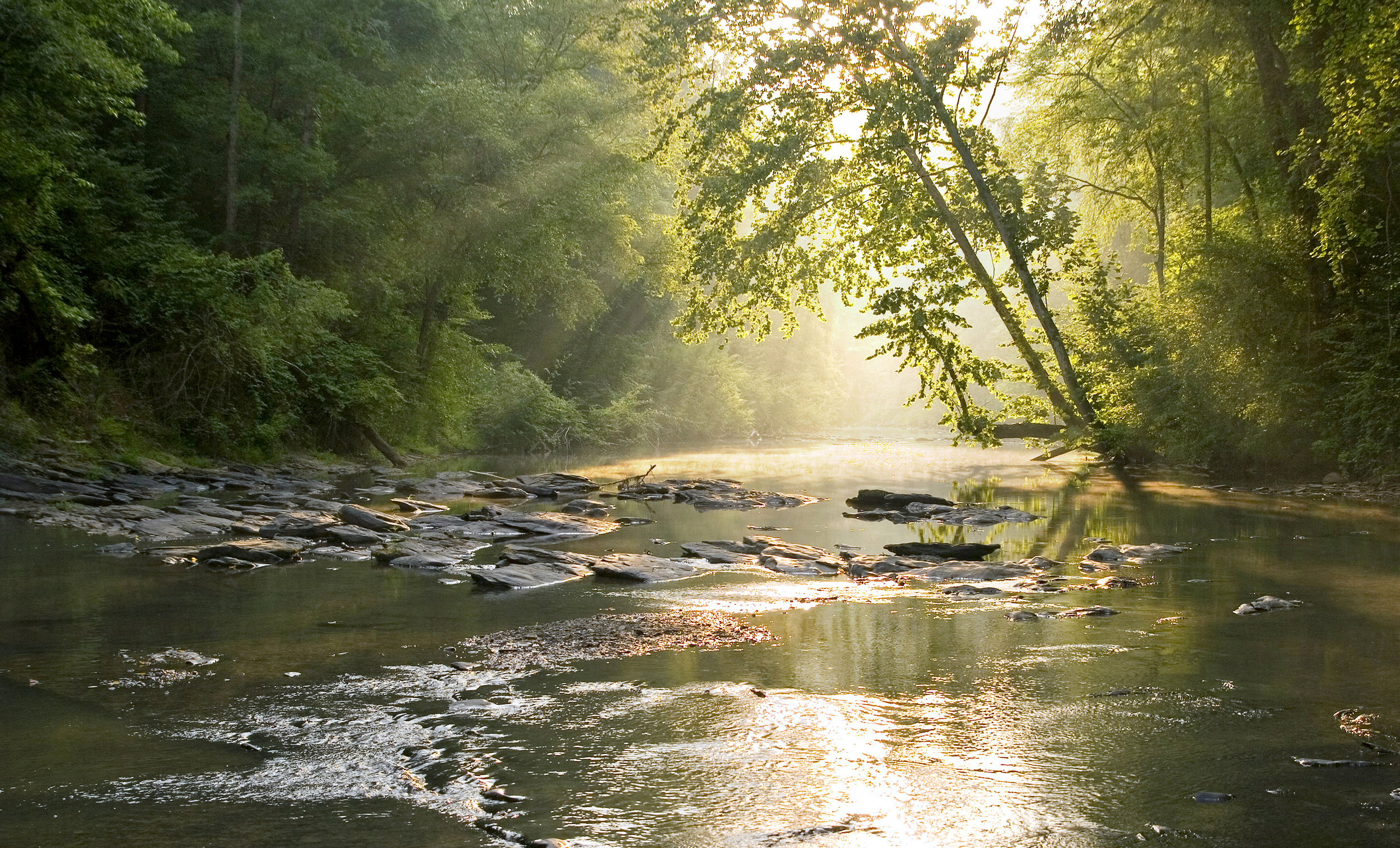 Sunrise on the Cahaba copy.jpg