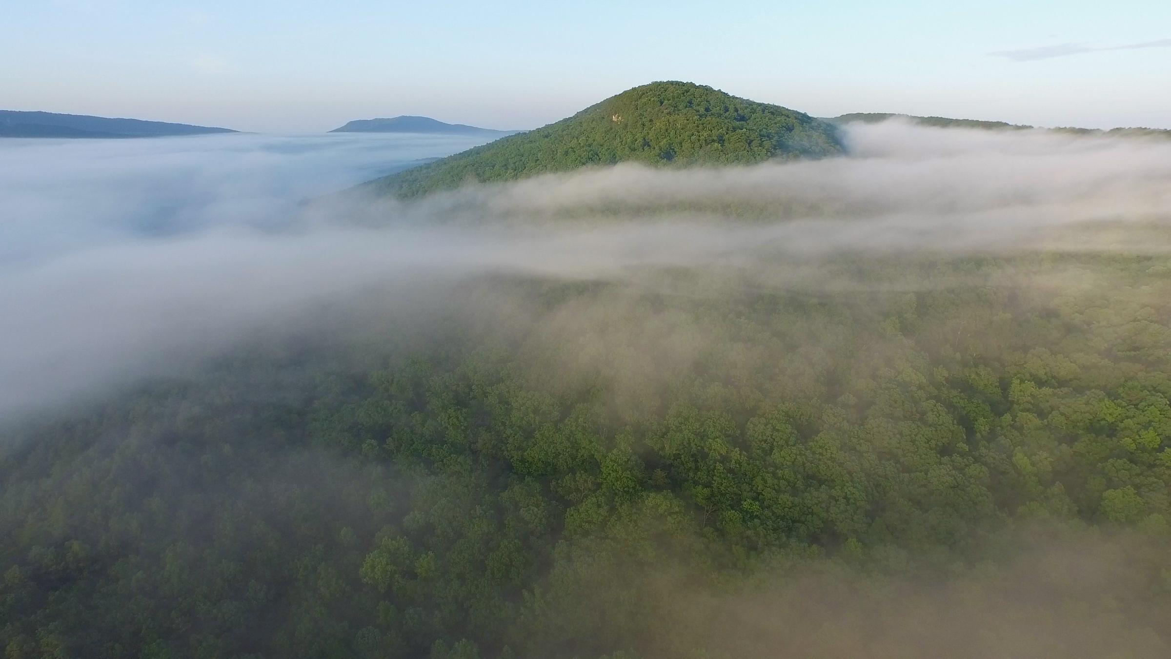 Coosa Mountain Fog.jpg