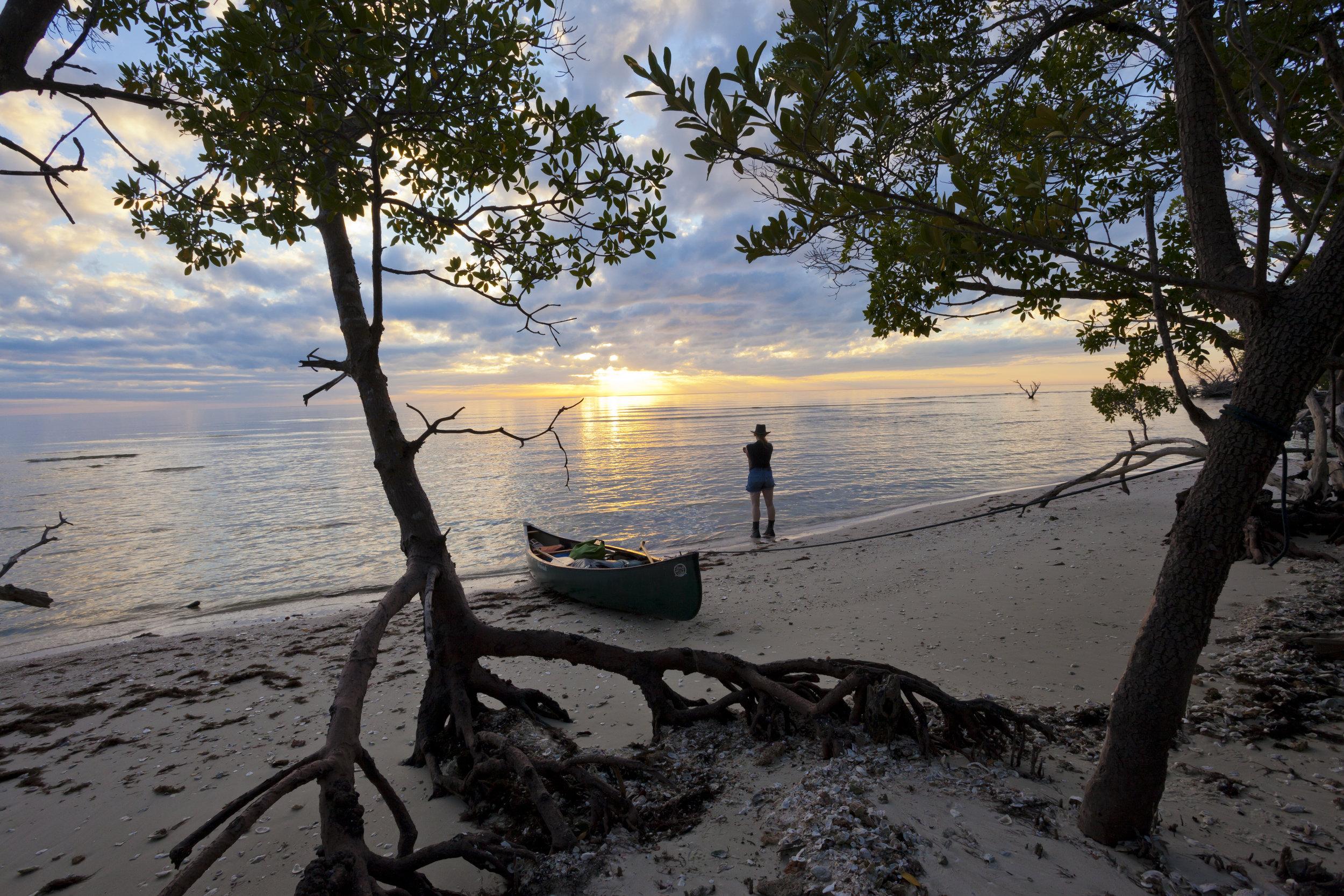 Everglades Beach.jpg