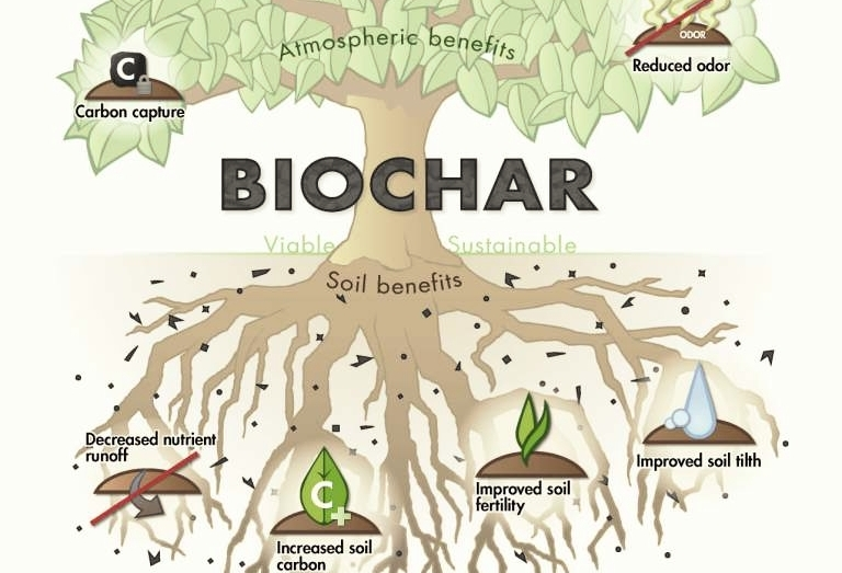 Biochar & Soil Fertility - Michael Wittman, Los Angeles-based biochar guru demystifies this soil amendment and lays down the basics of how, what and why you should incorporate this into your gardening.
